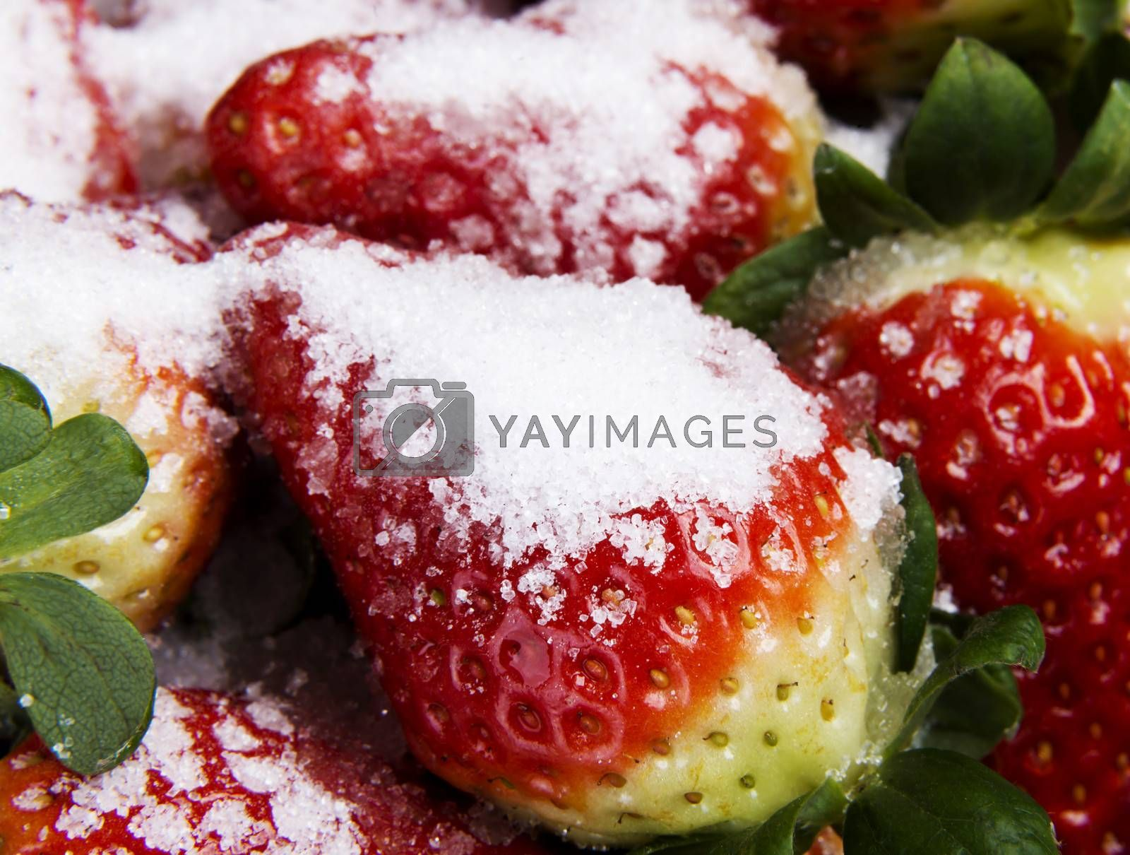 Royalty free image of Close up on fresh red strawberries. by BDS