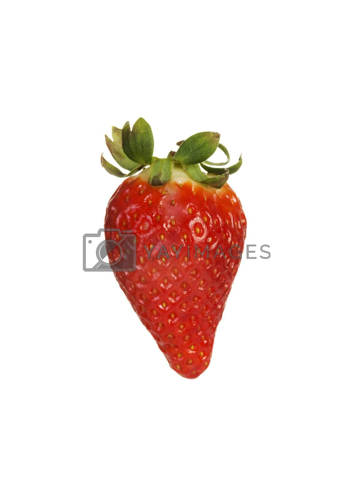 Royalty free image of One separated fresh strawberry. by BDS