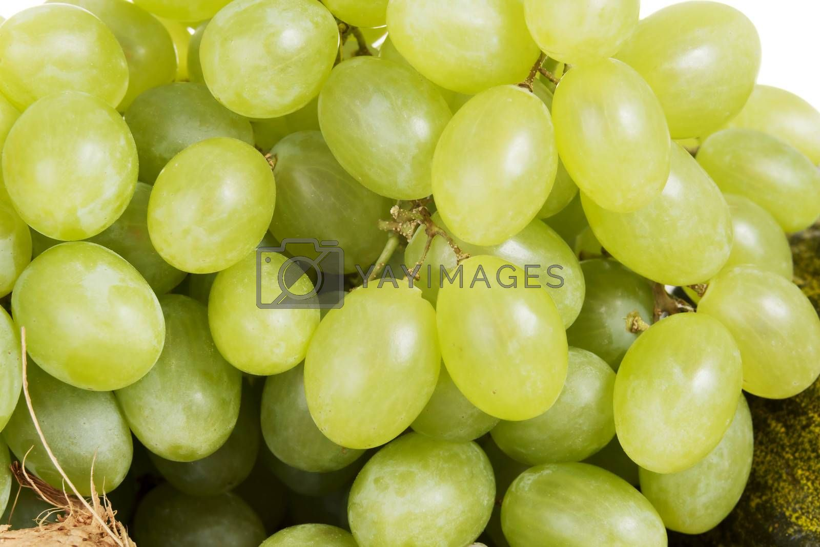 Close up on fresh green tasty grapes.