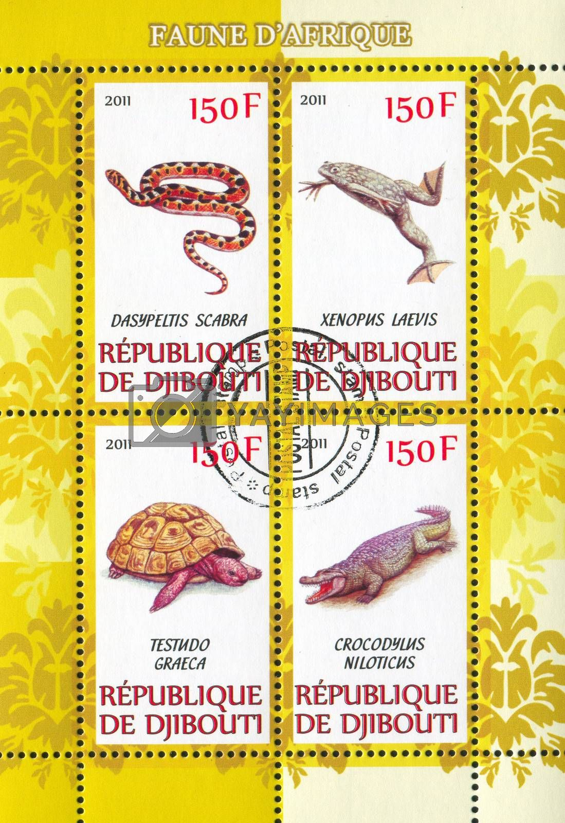 DJIBOUTI - CIRCA 2011: stamp printed by Djibouti, shows animals, circa 2011