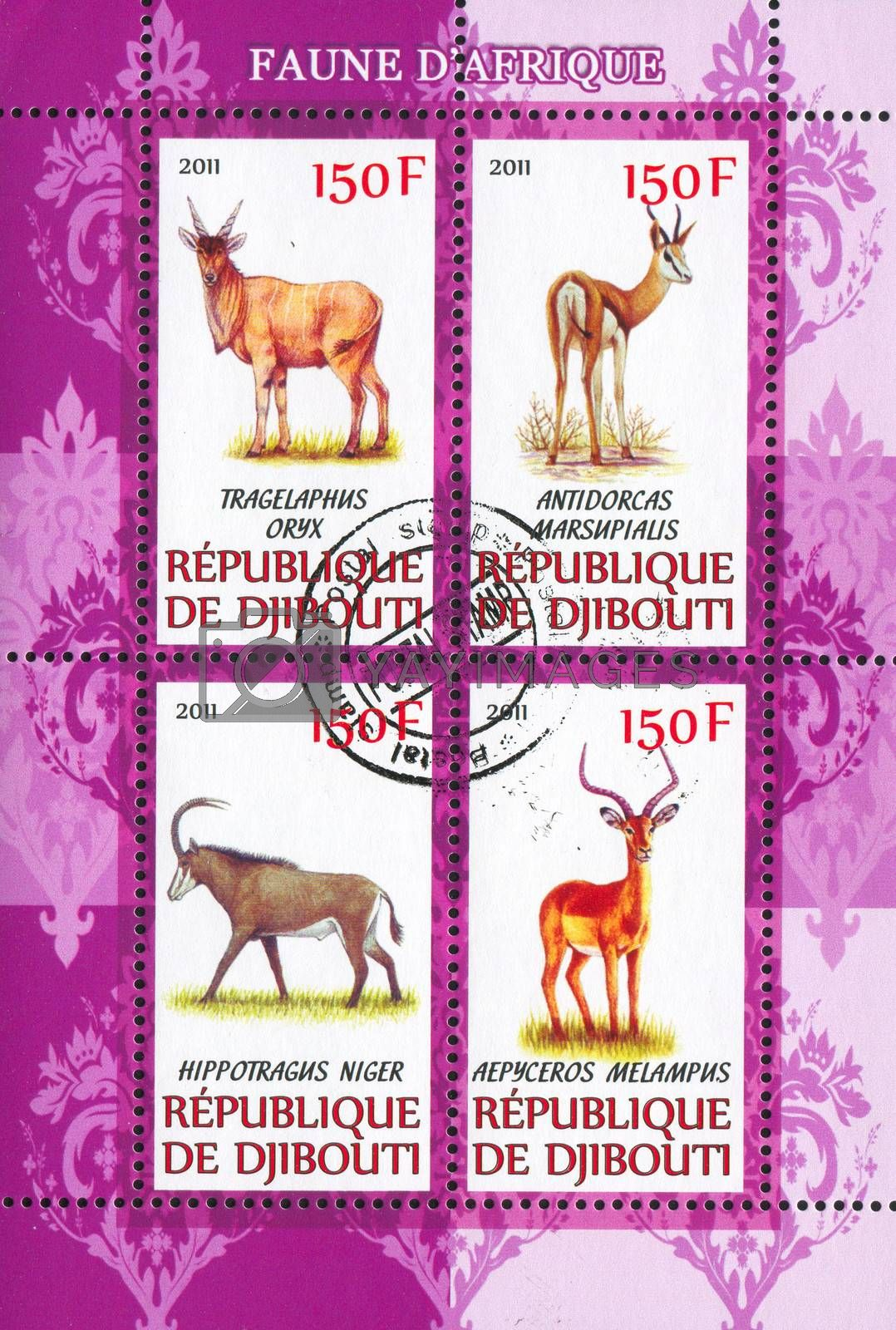 DJIBOUTI - CIRCA 2011: stamp printed by Djibouti, shows african animals, circa 2011