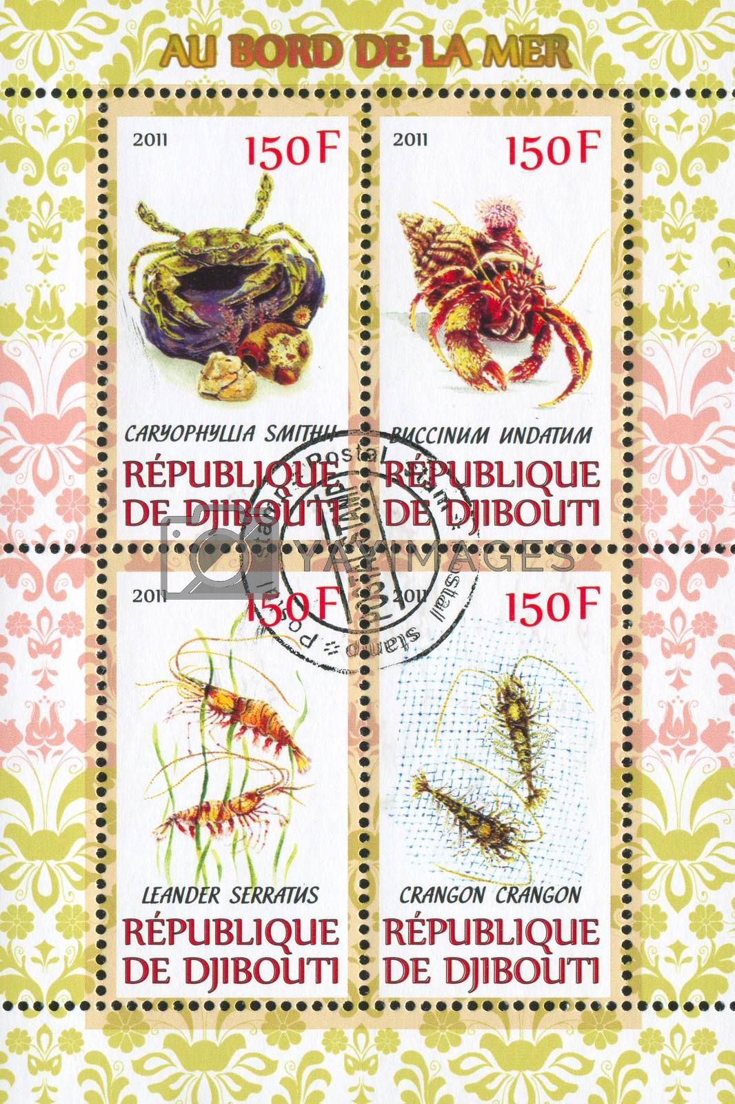 DJIBOUTI - CIRCA 2011: stamp printed by Djibouti, shows ocean animals, circa 2011