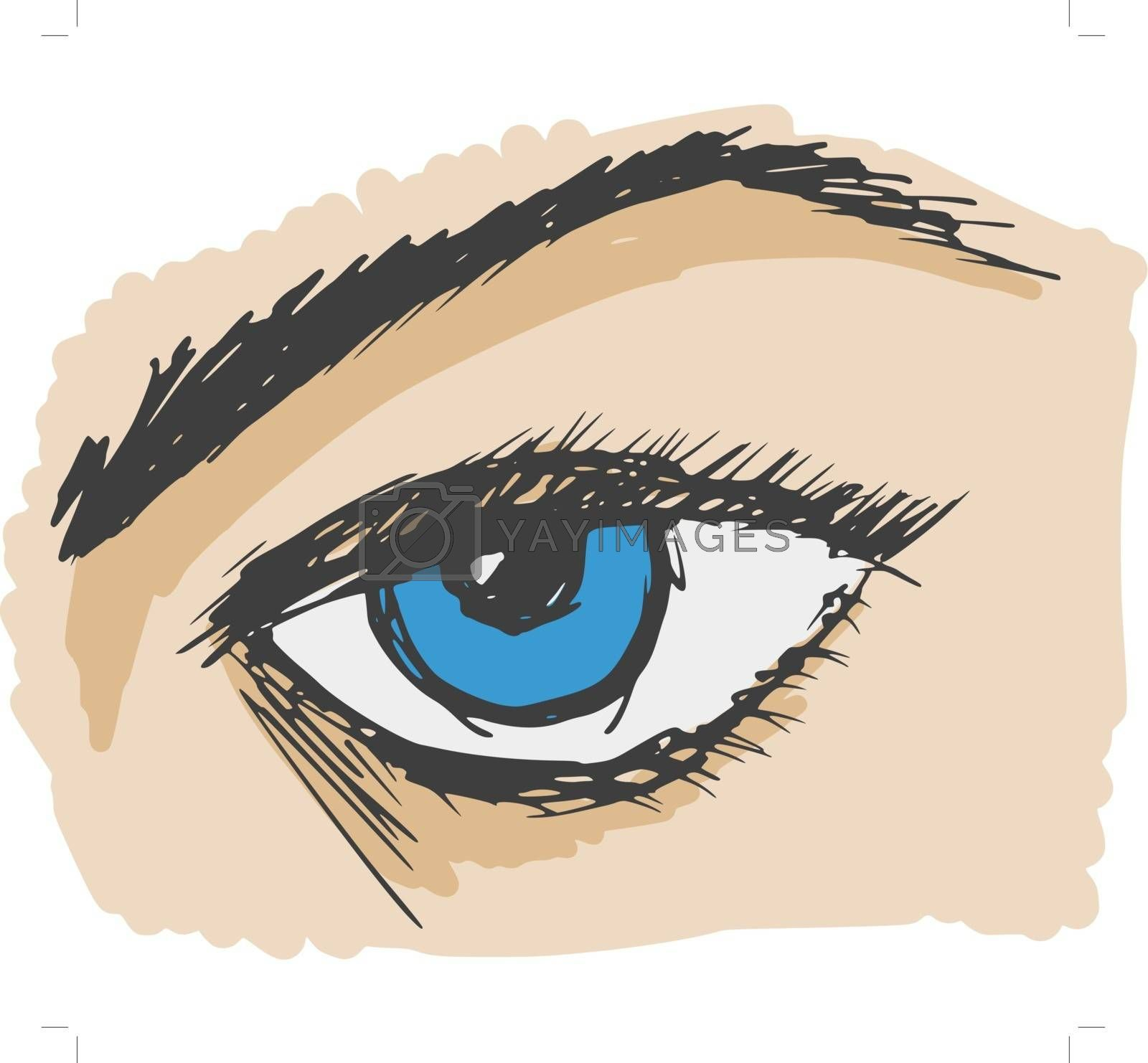 Royalty free image of human eye by Perysty