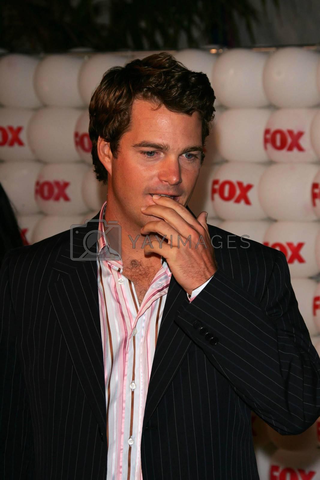 Chris O'Donnell At the FOX Summer 2005 TCA Party, Santa Monica Pier, Santa Monica, CA 07-29-05