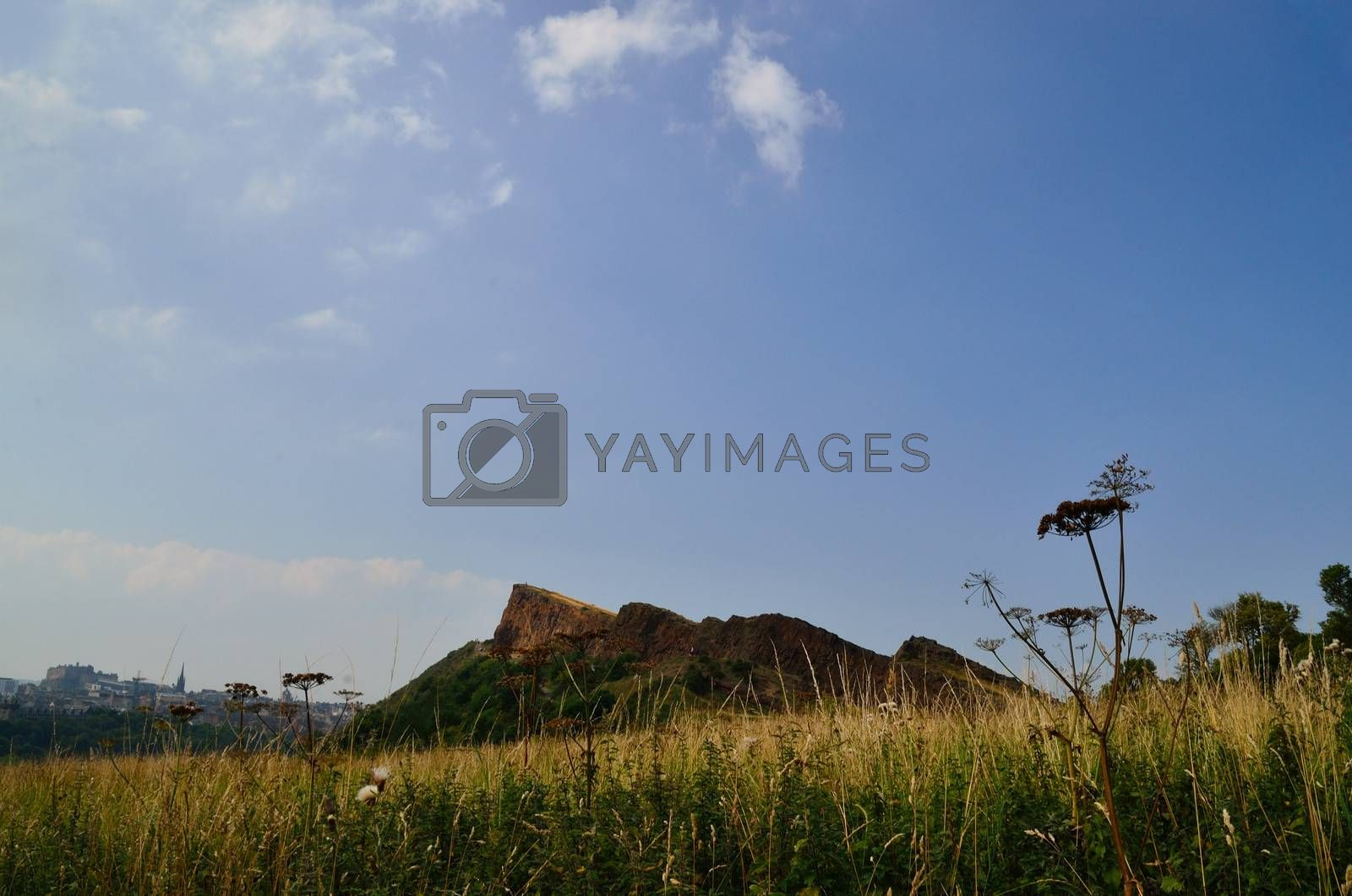 arthur seat mountain and meadow in summer in scotland