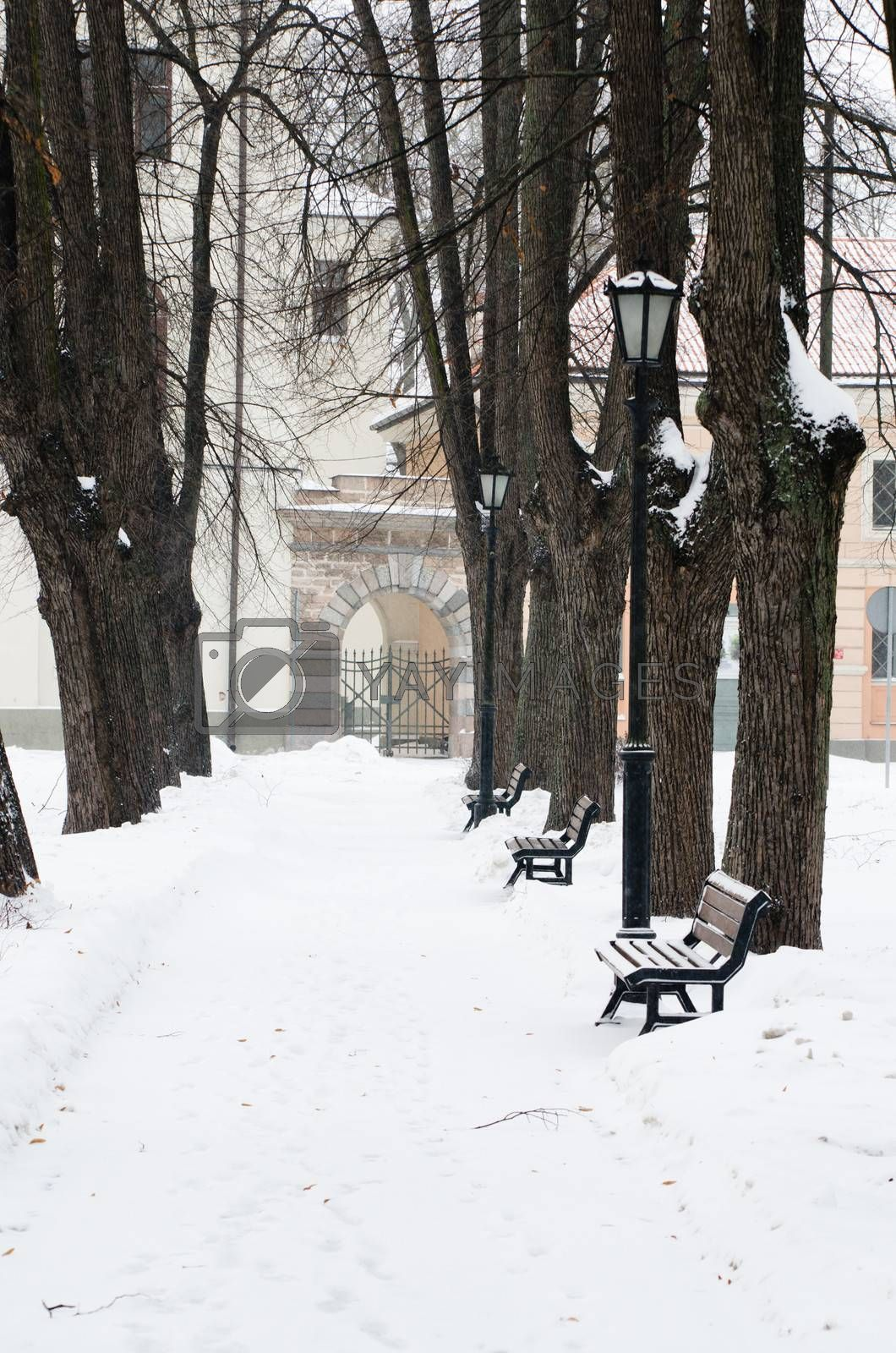 The park brought by a snow in the center of Riga