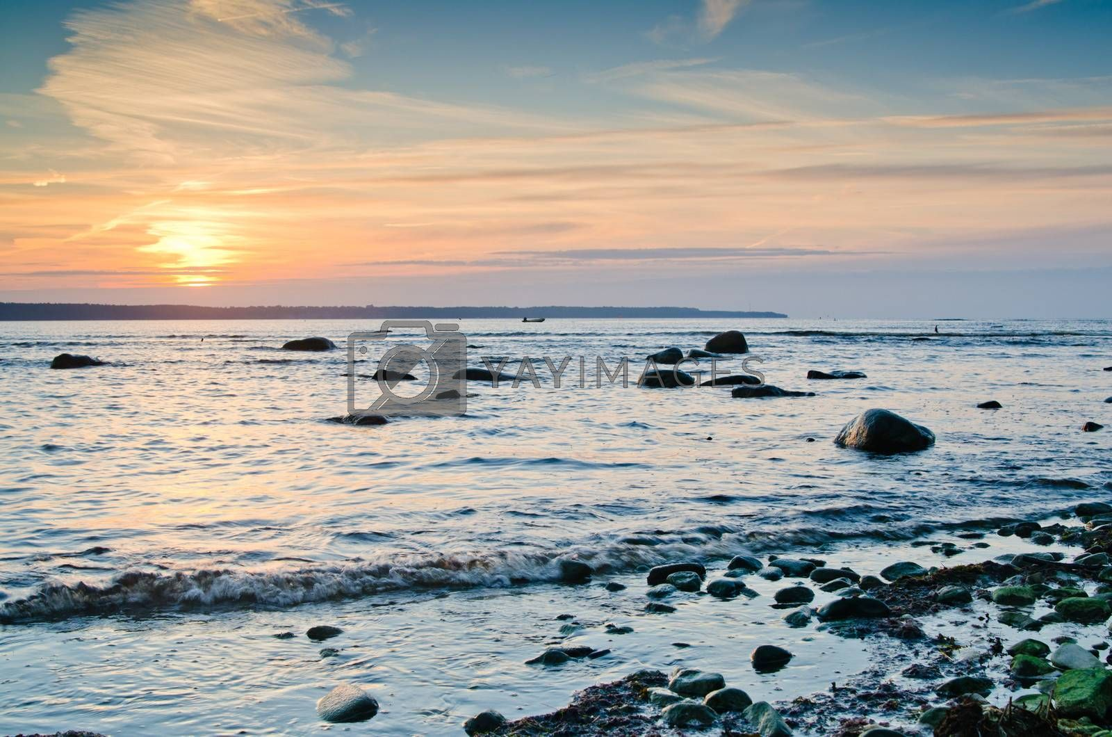 Coast of the Baltic Sea at sunset
