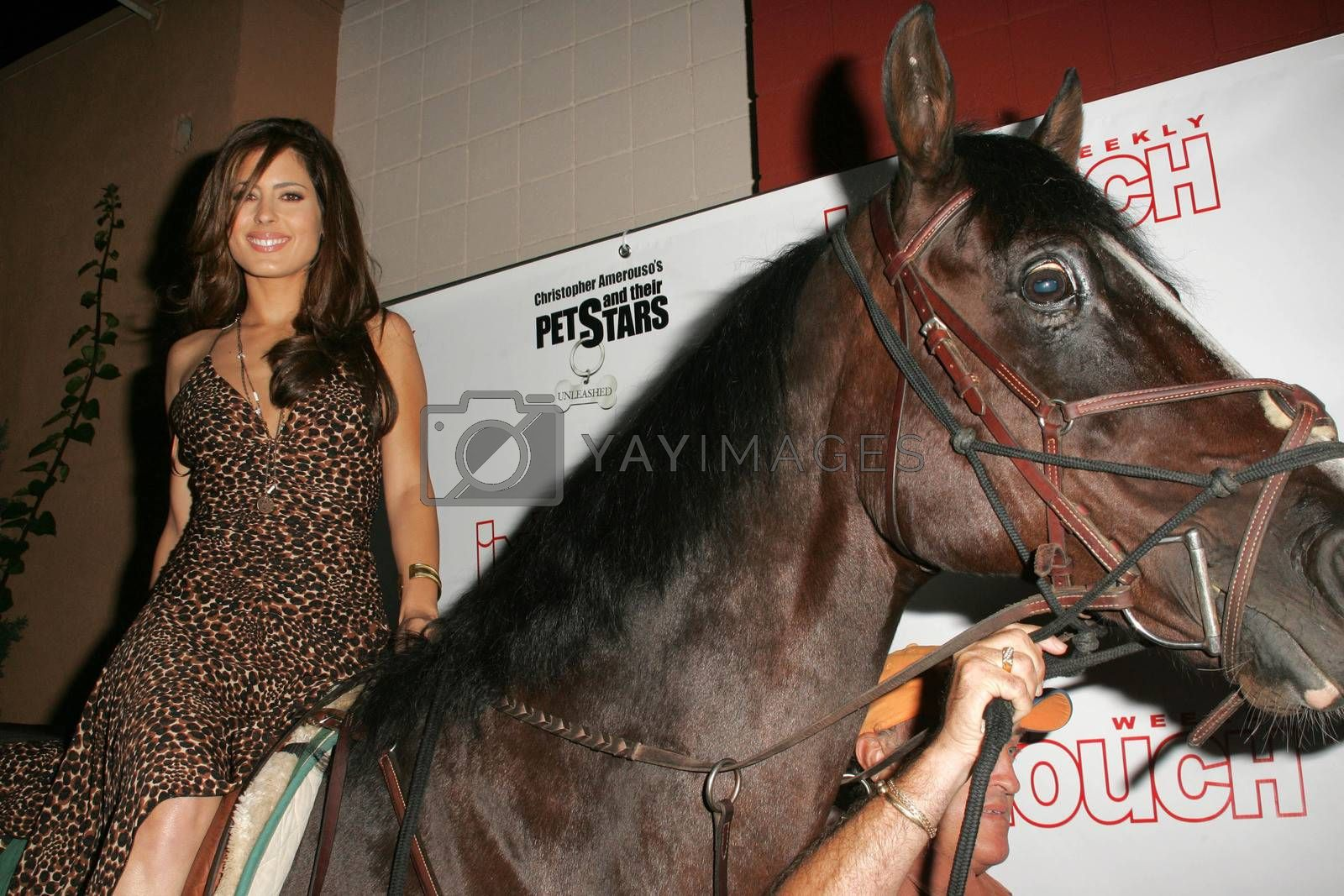 """Kerri Kasem arrives on her horse """"Playboy"""" at the In Touch Presents Pets And Their Stars Party, Cabana Club, Hollywood, CA 09-21-05"""