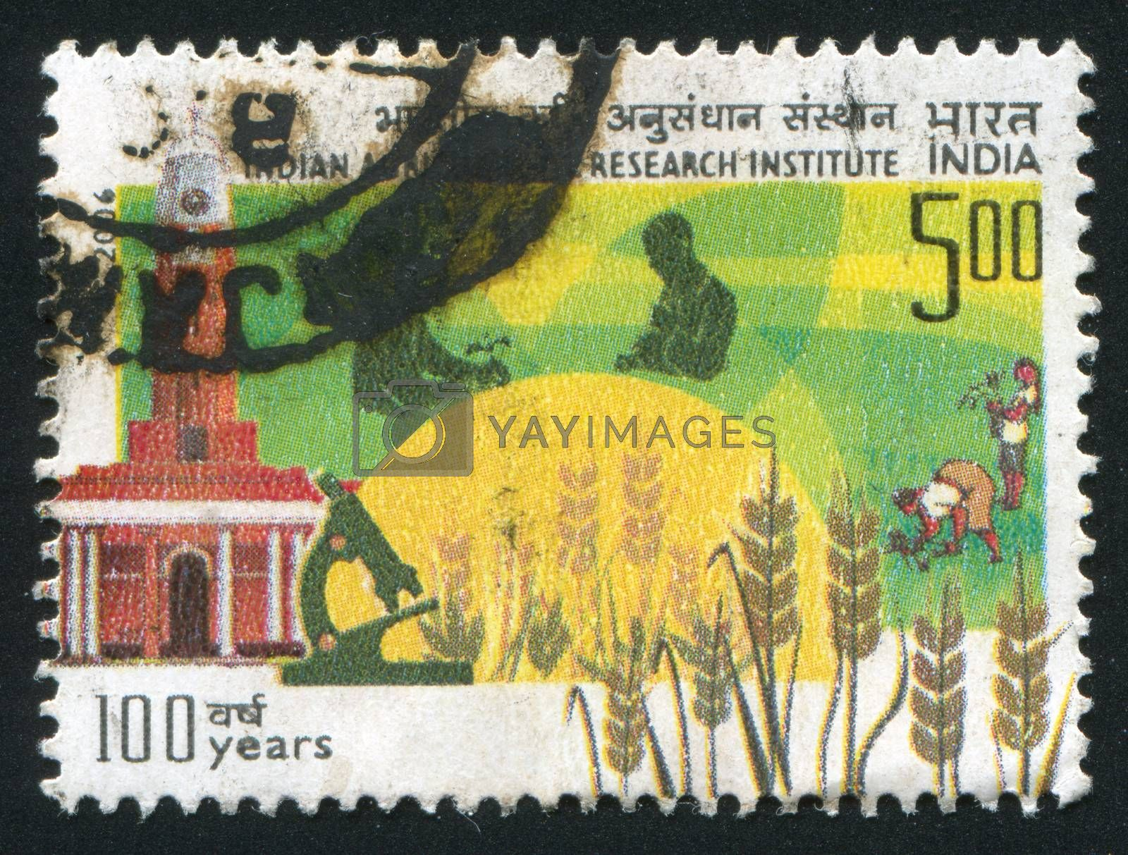 INDIA - CIRCA 2006: stamp printed by India, shows crop, microscope, people, building, circa 2006