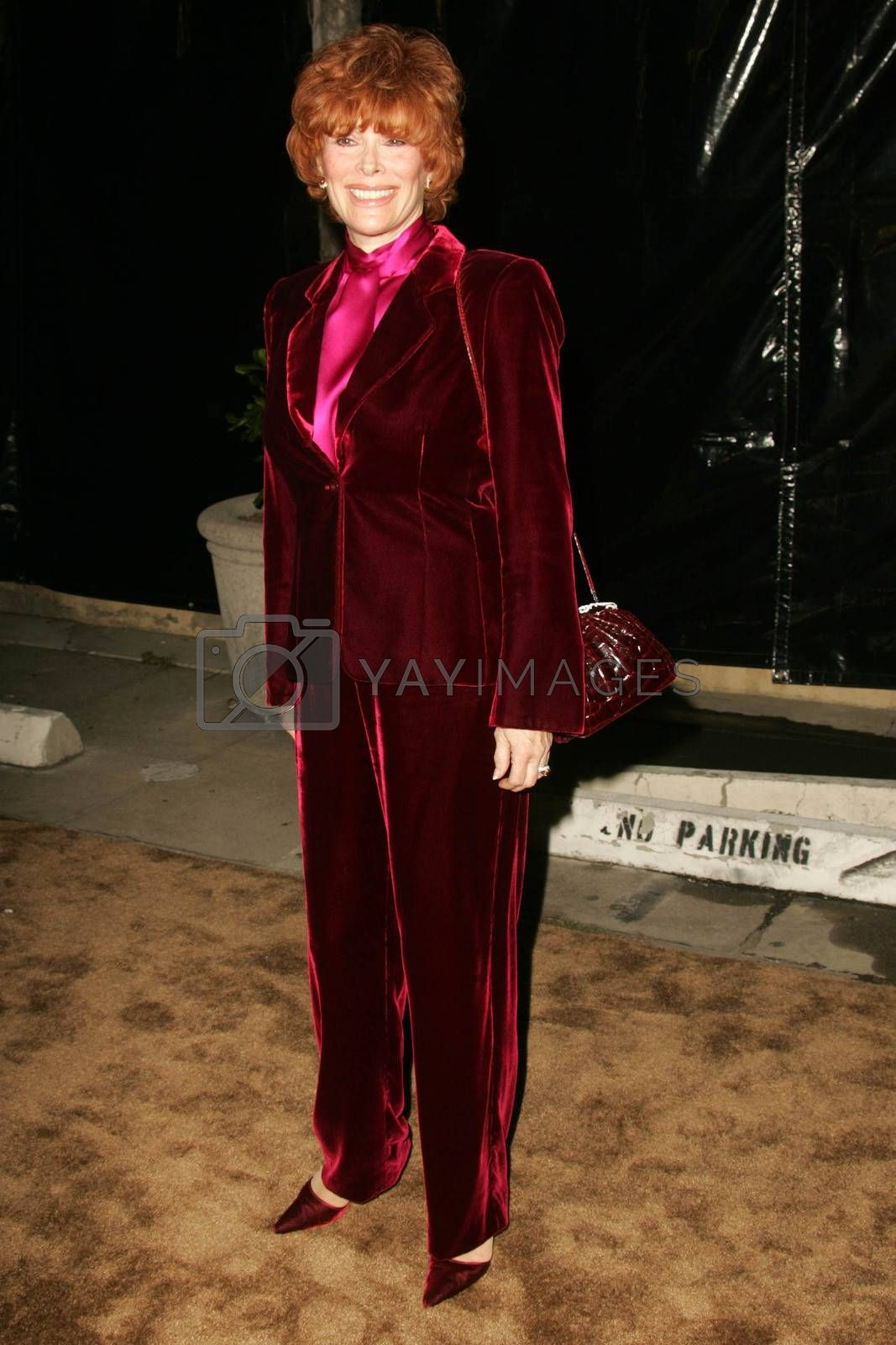Jill St. John at the 2nd Annual A Fine Romance, Hollywood and Broadway Musical Fundraiser. Sunset Gower Studios, Hollywood, CA. 11-18-06