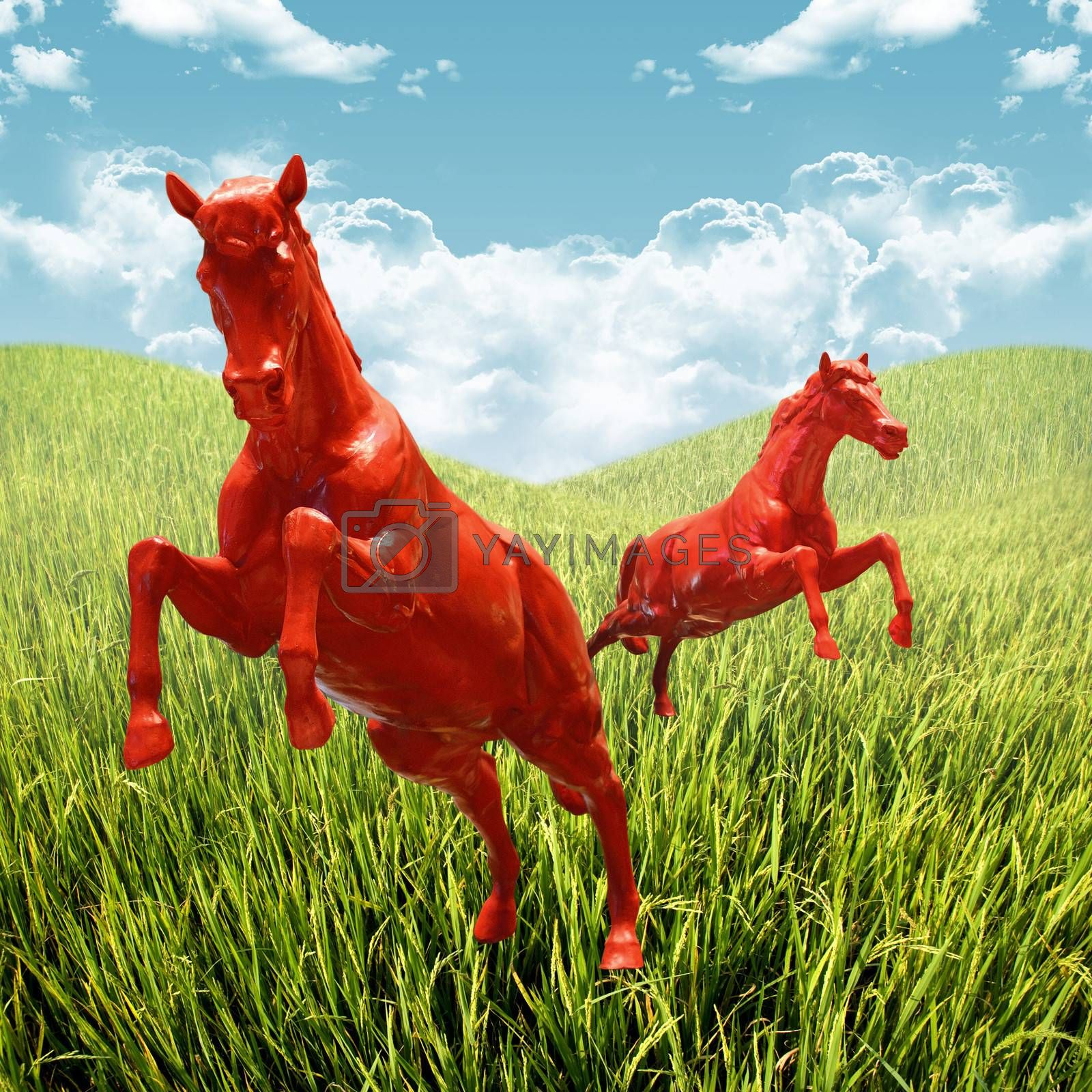 Red Horse Running In The Field Royalty Free Stock Image Stock Photos Royalty Free Images Vectors Footage Yayimages