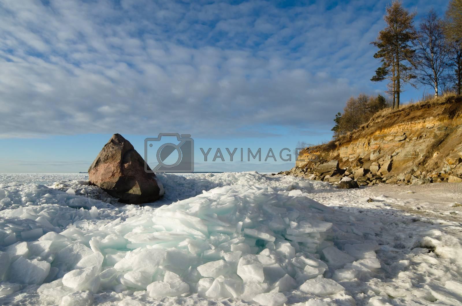 North Estonian limestone shore on a sunny winter day