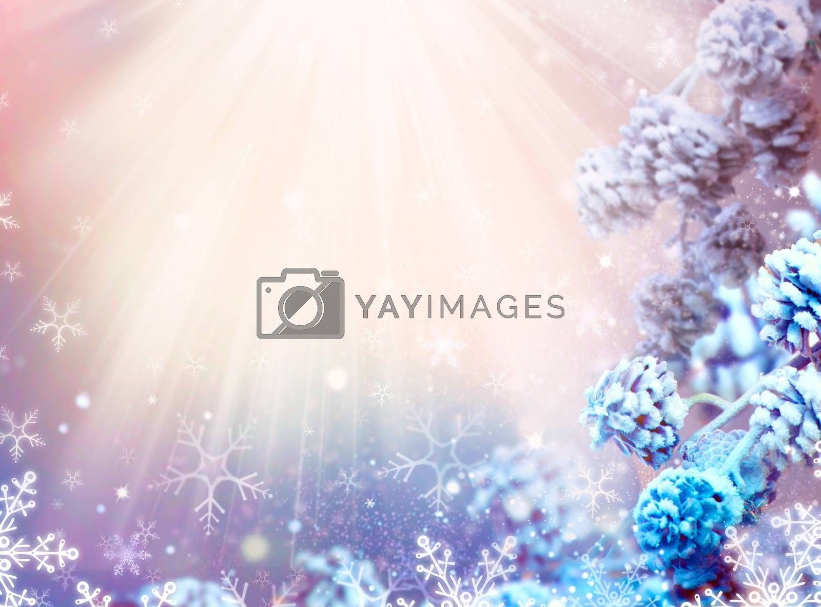 Winter Holiday Christmas and New Year Snow Background