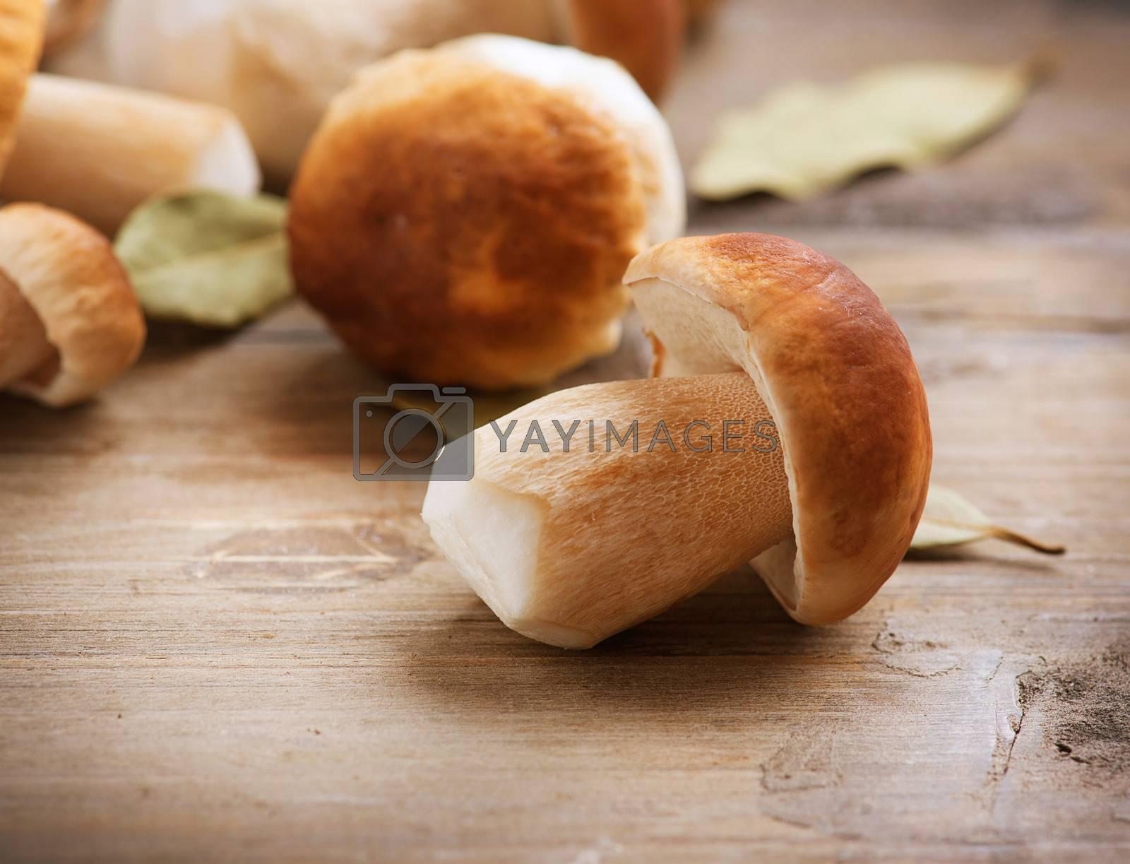 Mushroom Boletus over Wooden Background. Autumn Cep Mushrooms