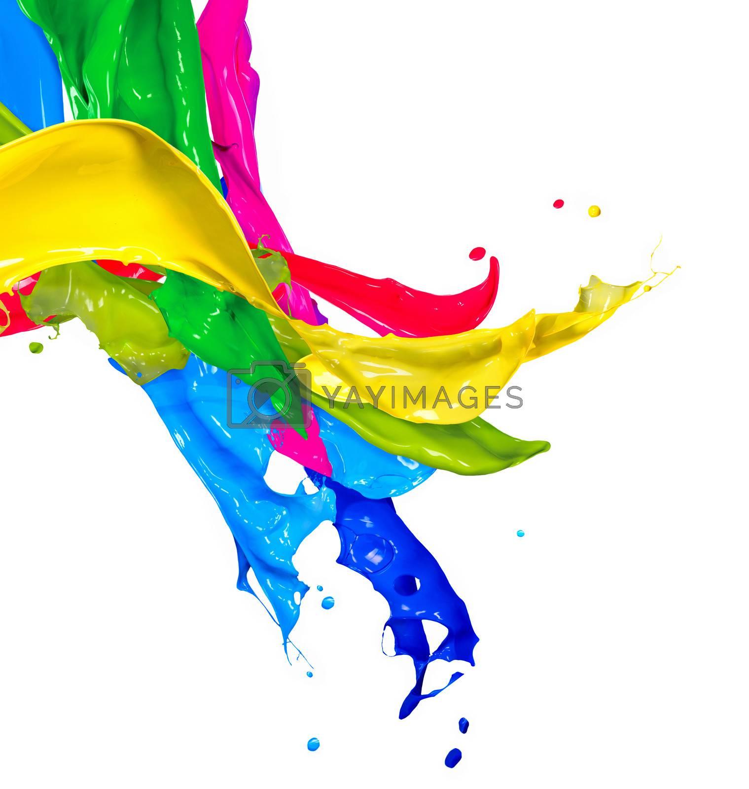 Colorful Paint Splash Isolated on White. Abstract Splashing