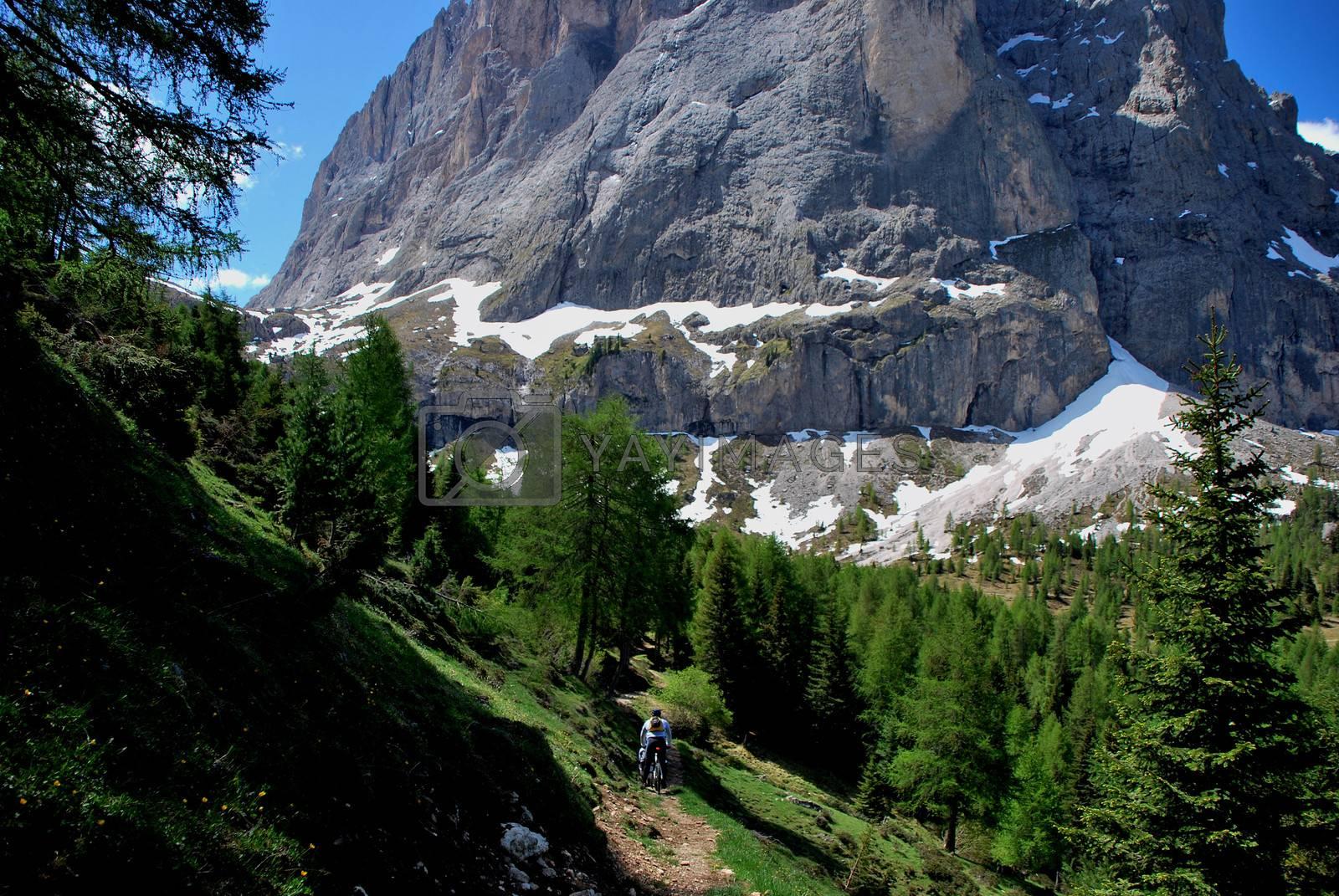 narrow path while mountain biking in the mountains