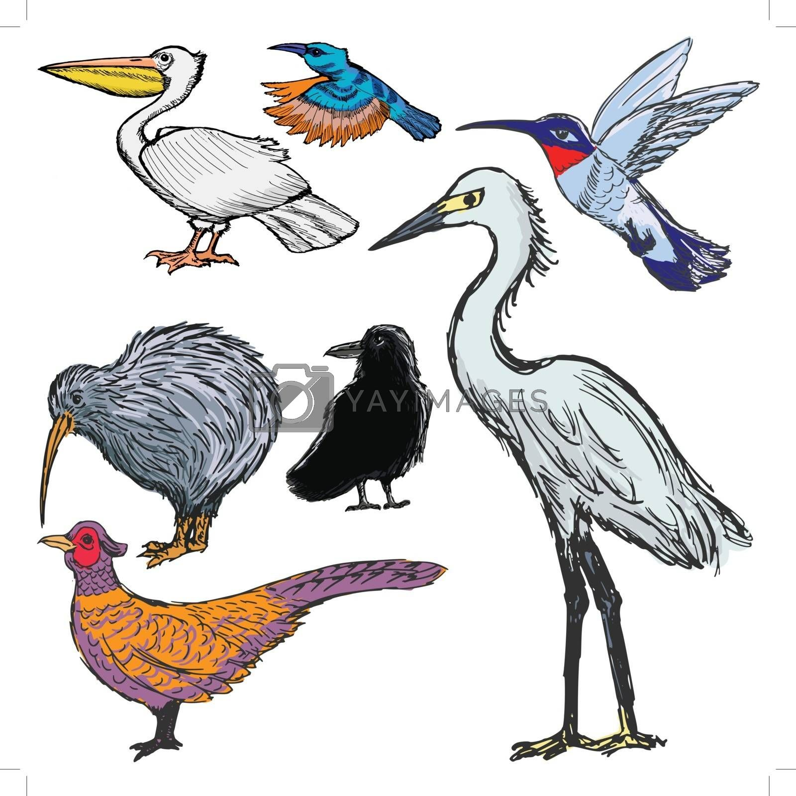 Royalty free image of set of birds by Perysty