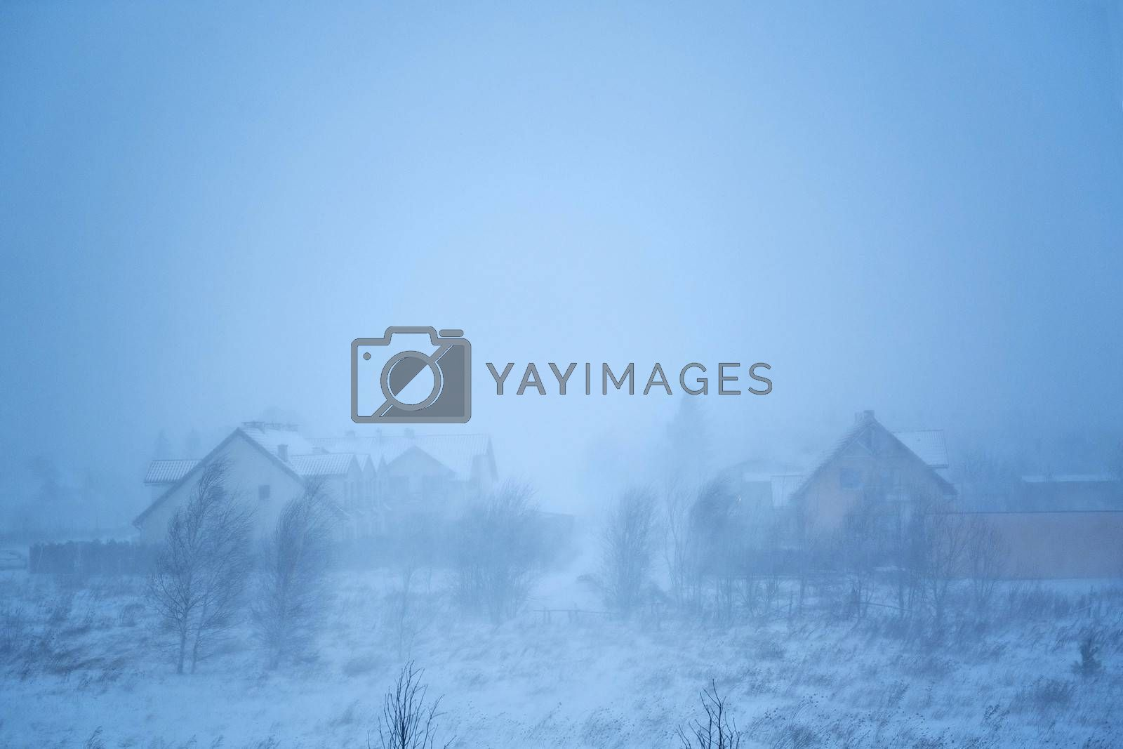 Snowy and windy winter
