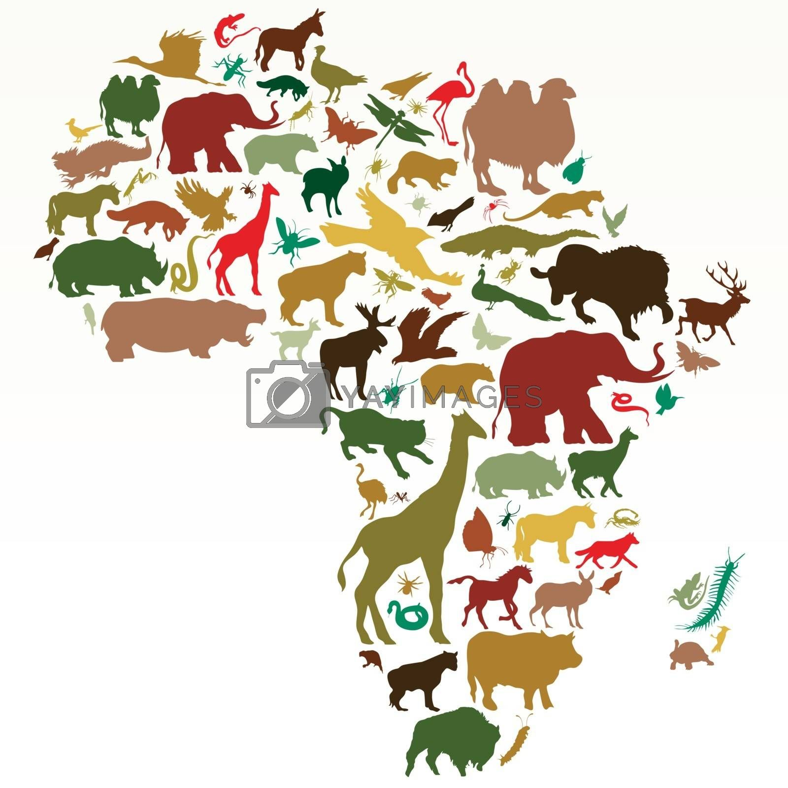 vector illustration of the animals of Africa