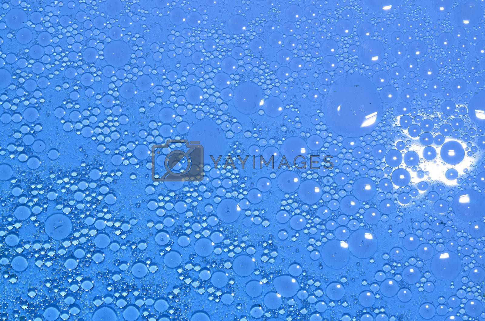 small blue circles of oil on water surface