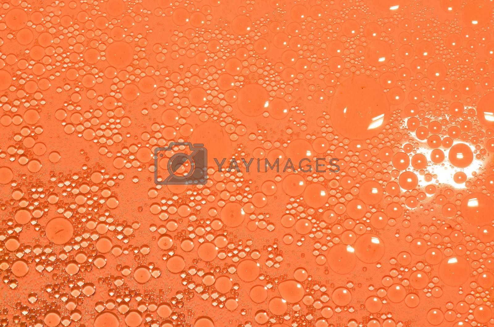 oil circles in orange water