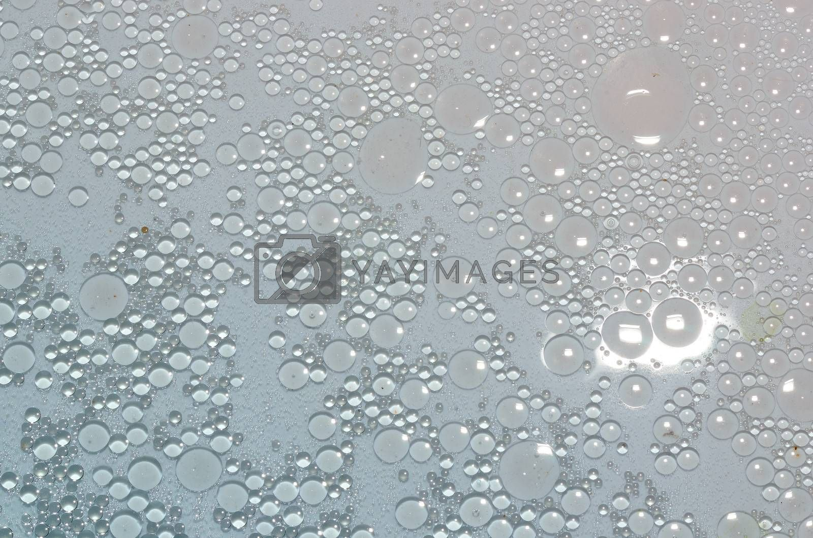 many small oil eye on a water surface