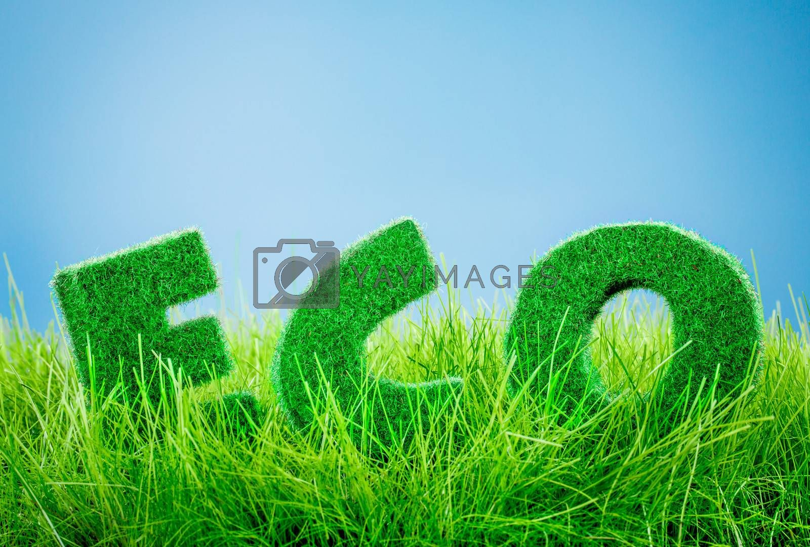 Letters on the green grass on blue background. Eco concept.