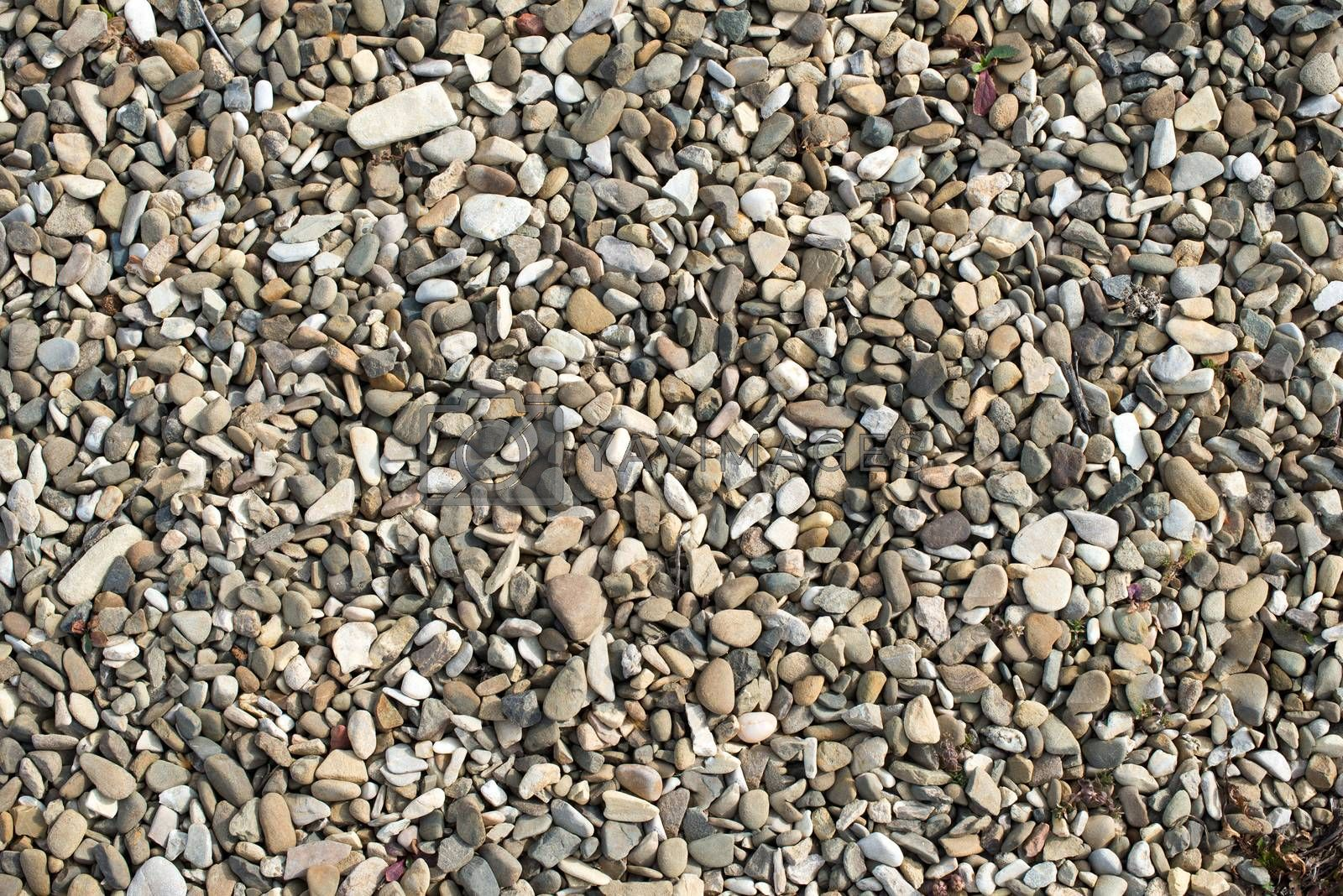 textural background sea pebbles