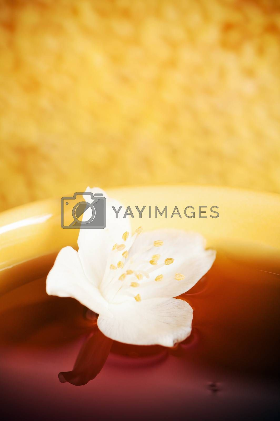 Cup of tea with a flower of a jasmin and honey
