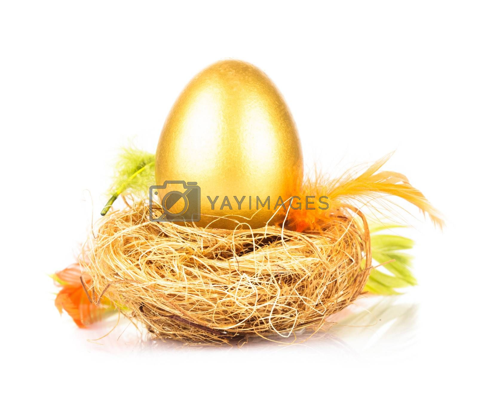 One golden eggs in the nest isolated on white