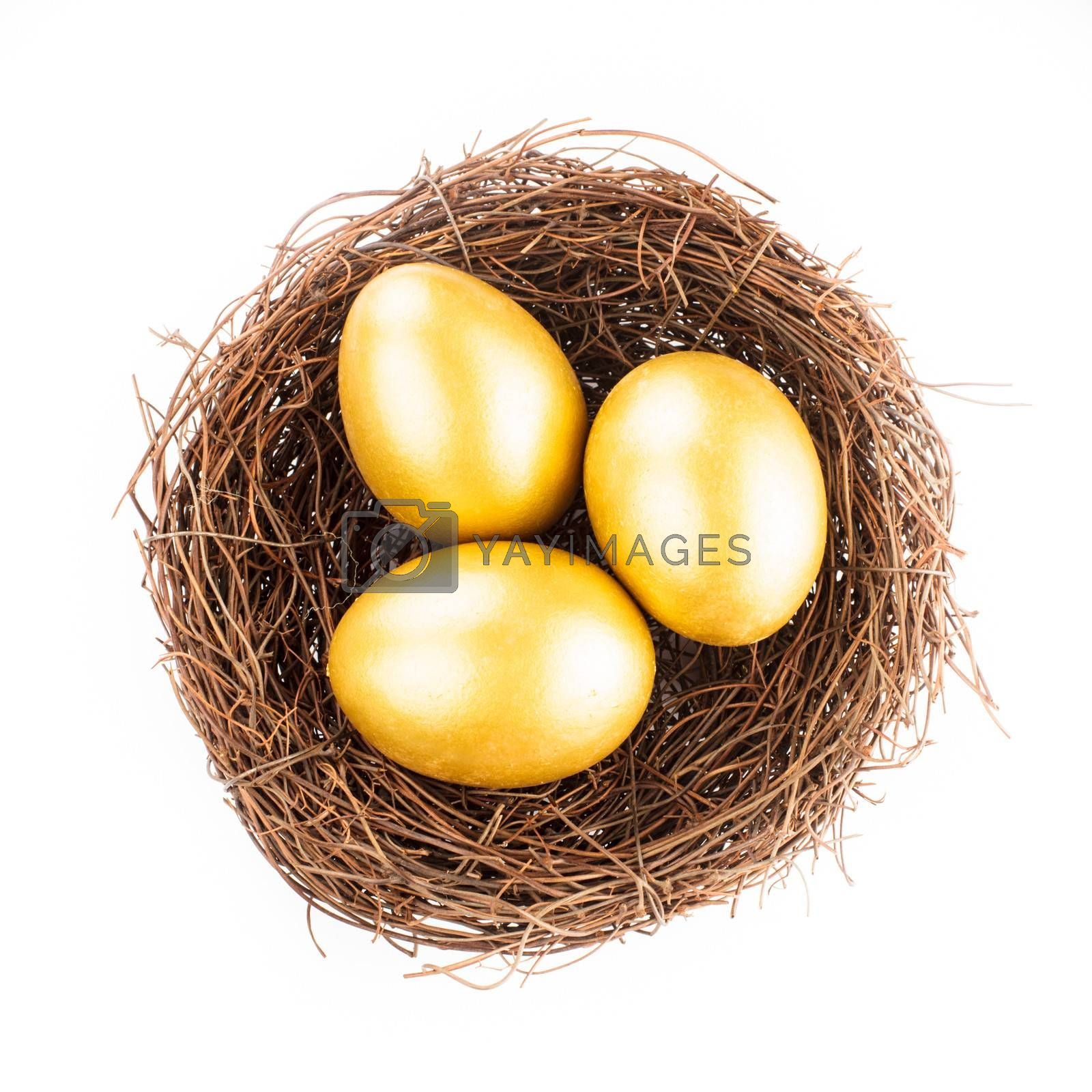 Three golden eggs in the nest isolated on white