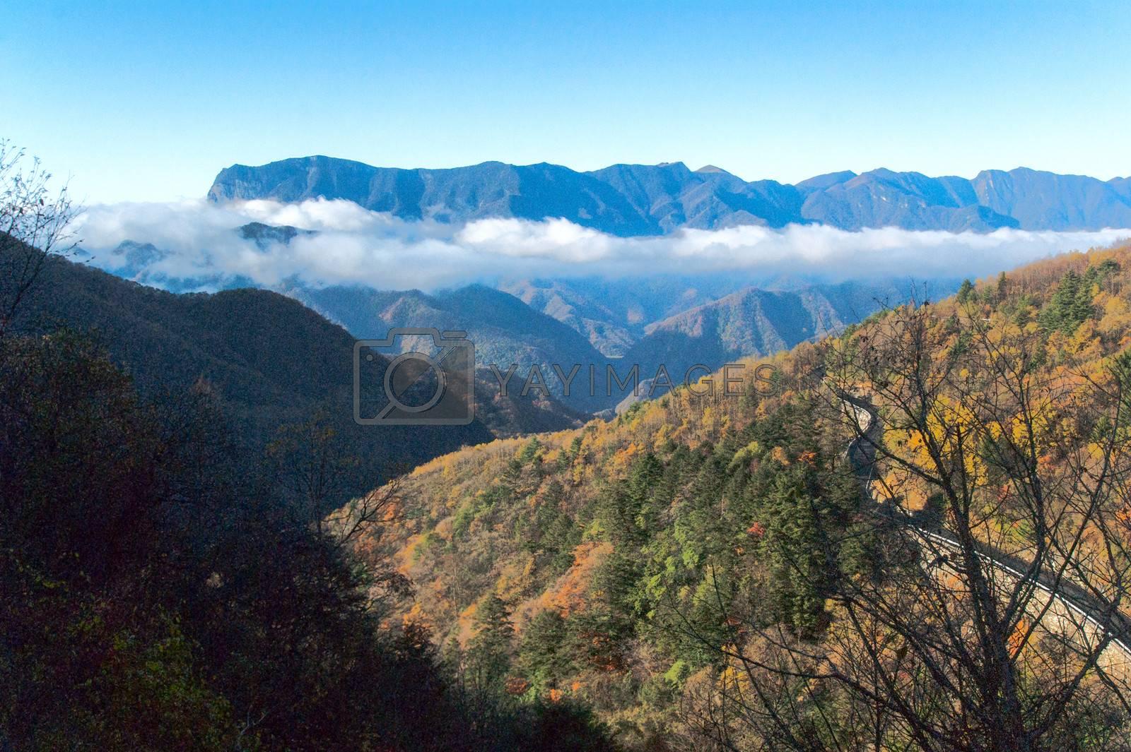 Shennongjia beauty - was taken in Hubei, China        SONY DSC