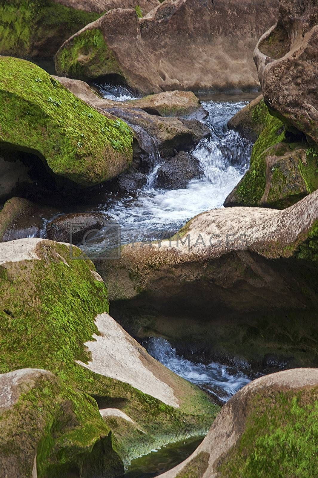Streams - a small waterfall by xfdly5