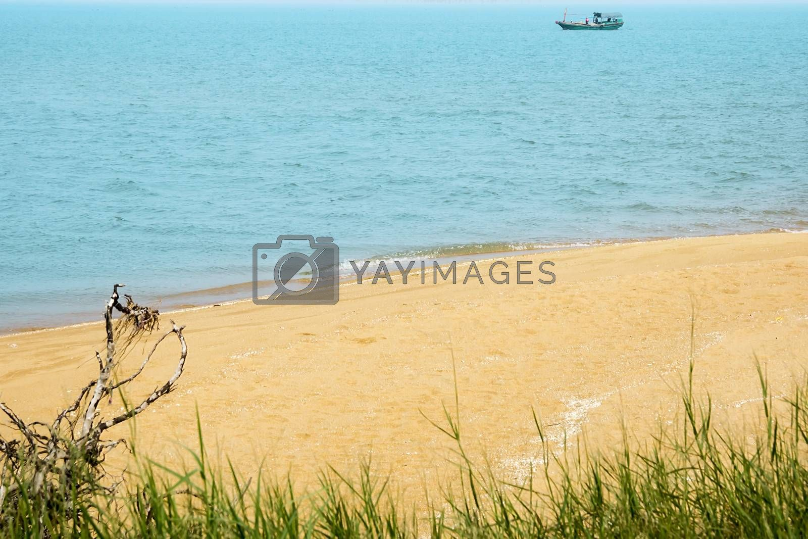 Royalty free image of China's Hainan Island tropical coastal scenery by xfdly5