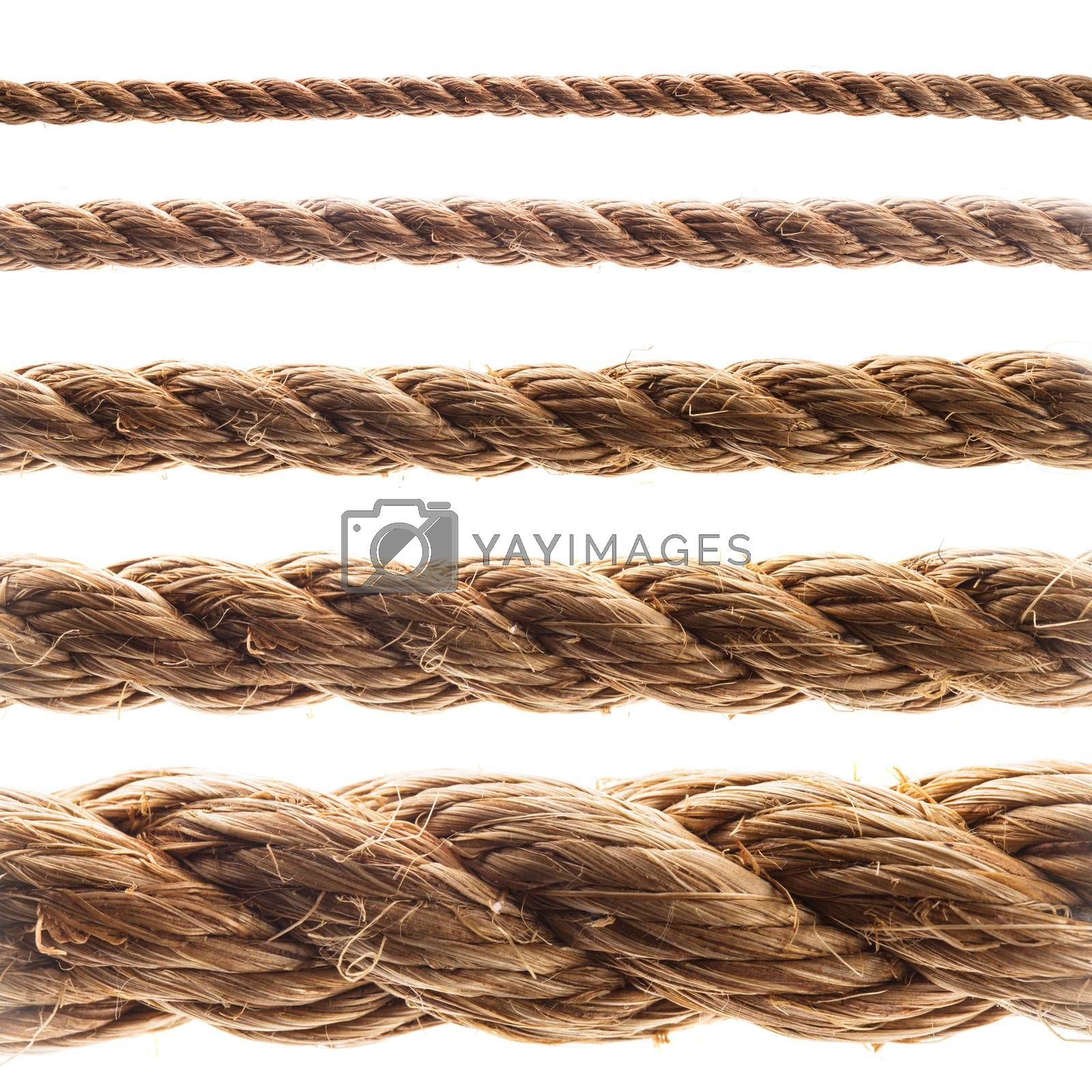 Collage of various thickness rope isolated on white
