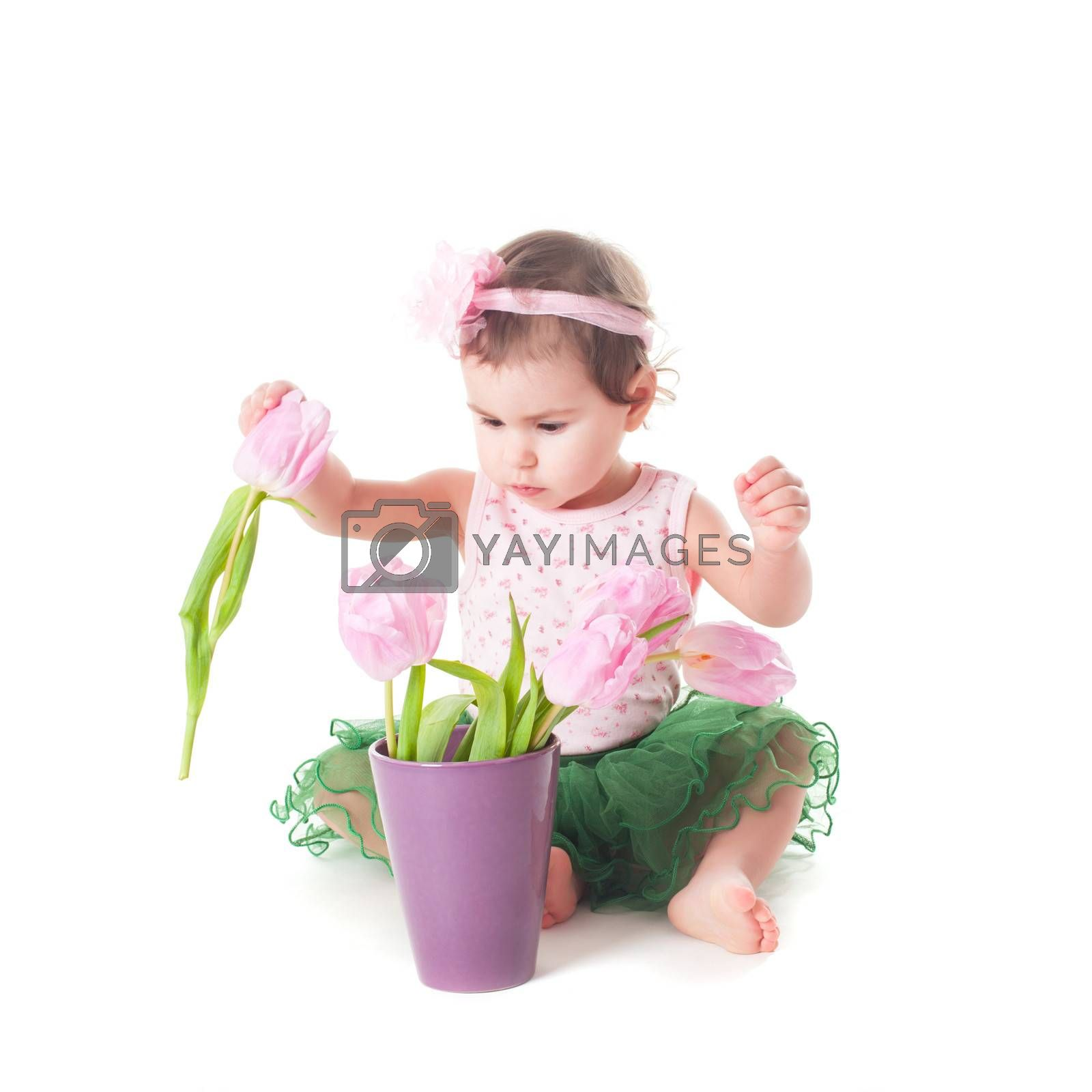 Adorable toddler girl with pink tulips, isolated on white