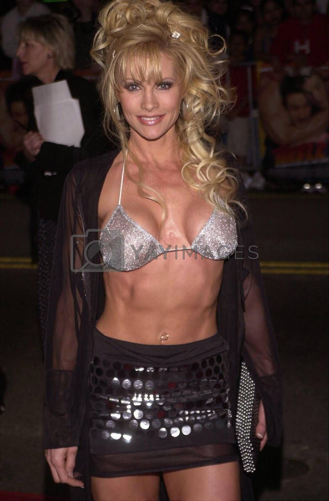 """Rena Mero at the premiere of Warner Brother's """"READY TO RUMBLE"""" in Hollywood, 04-05-00"""
