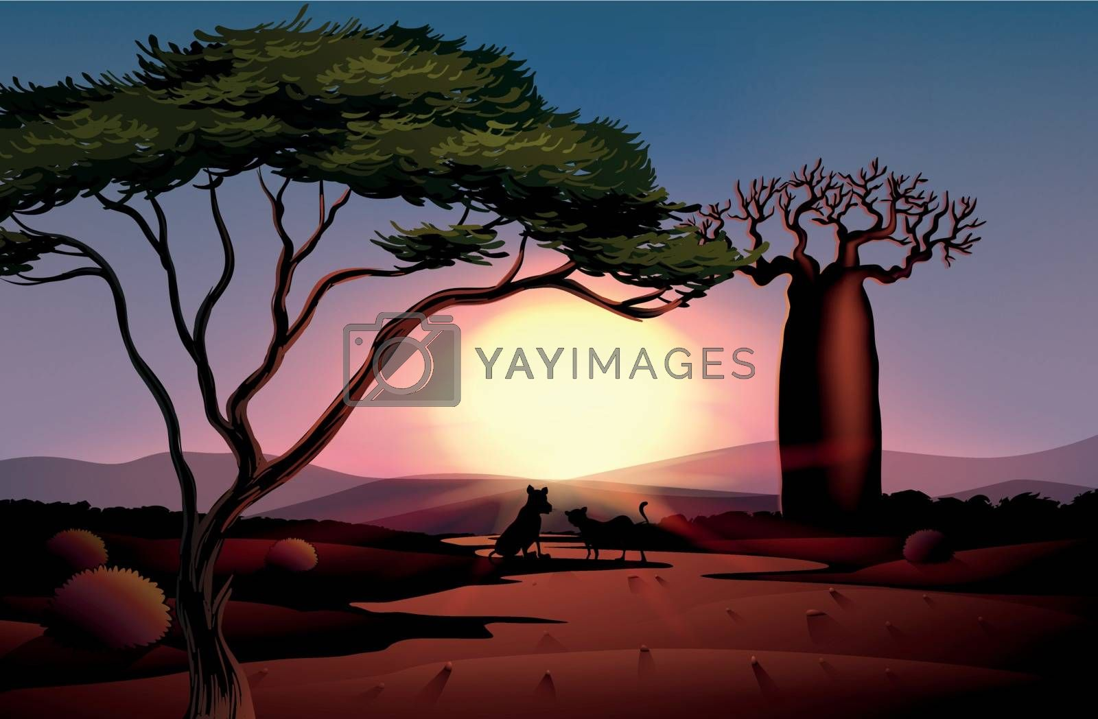 Illustration of a sunset in the desert with two animals