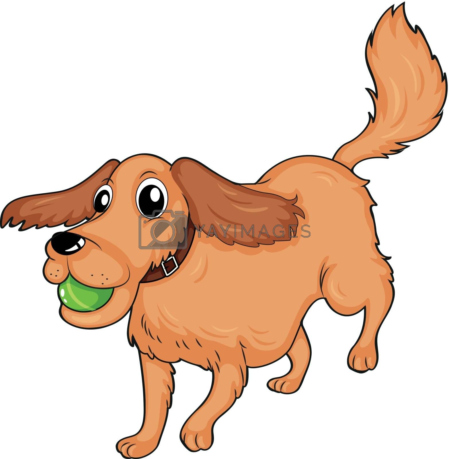 Illustration of a dog playing with the ball on a white background