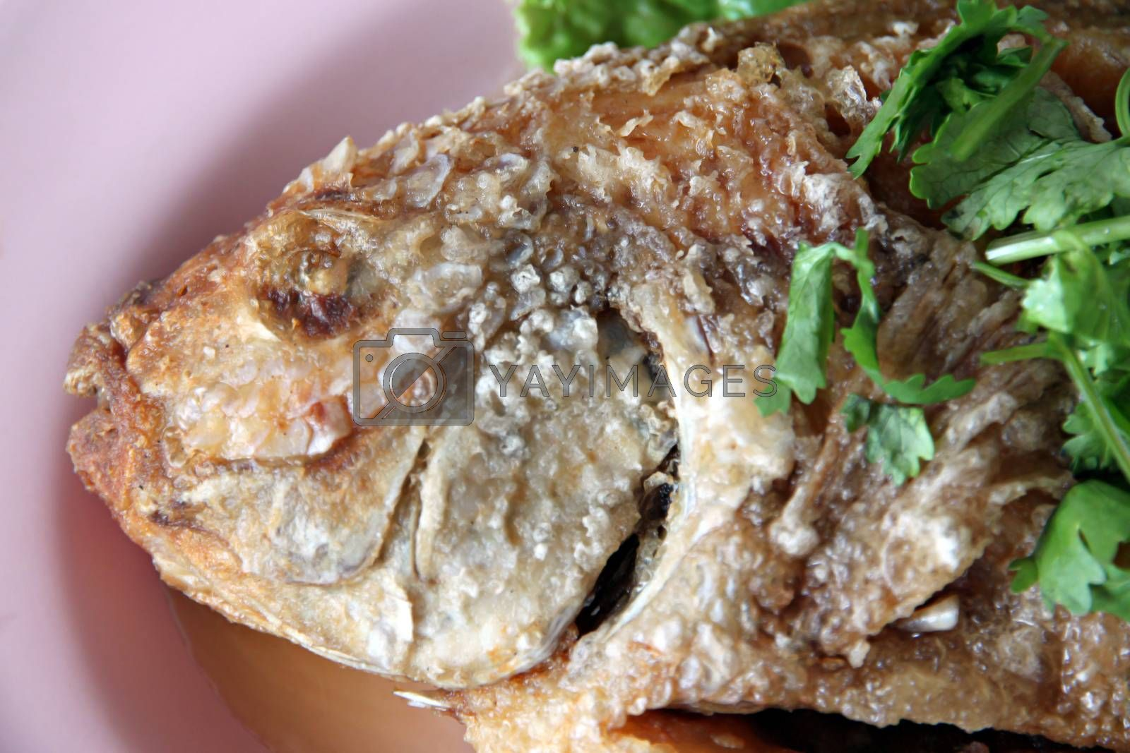 The Thai food of Fried fish and cilantro in the dish.