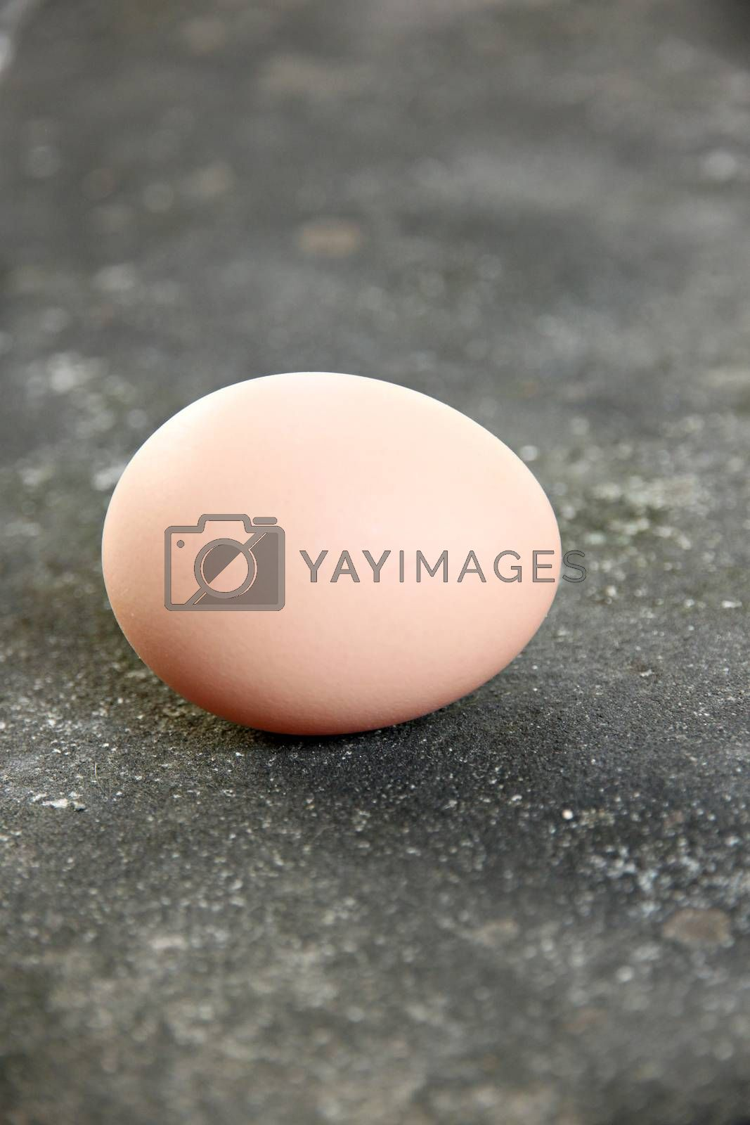 The Picture focus Eggs laid on the floor.