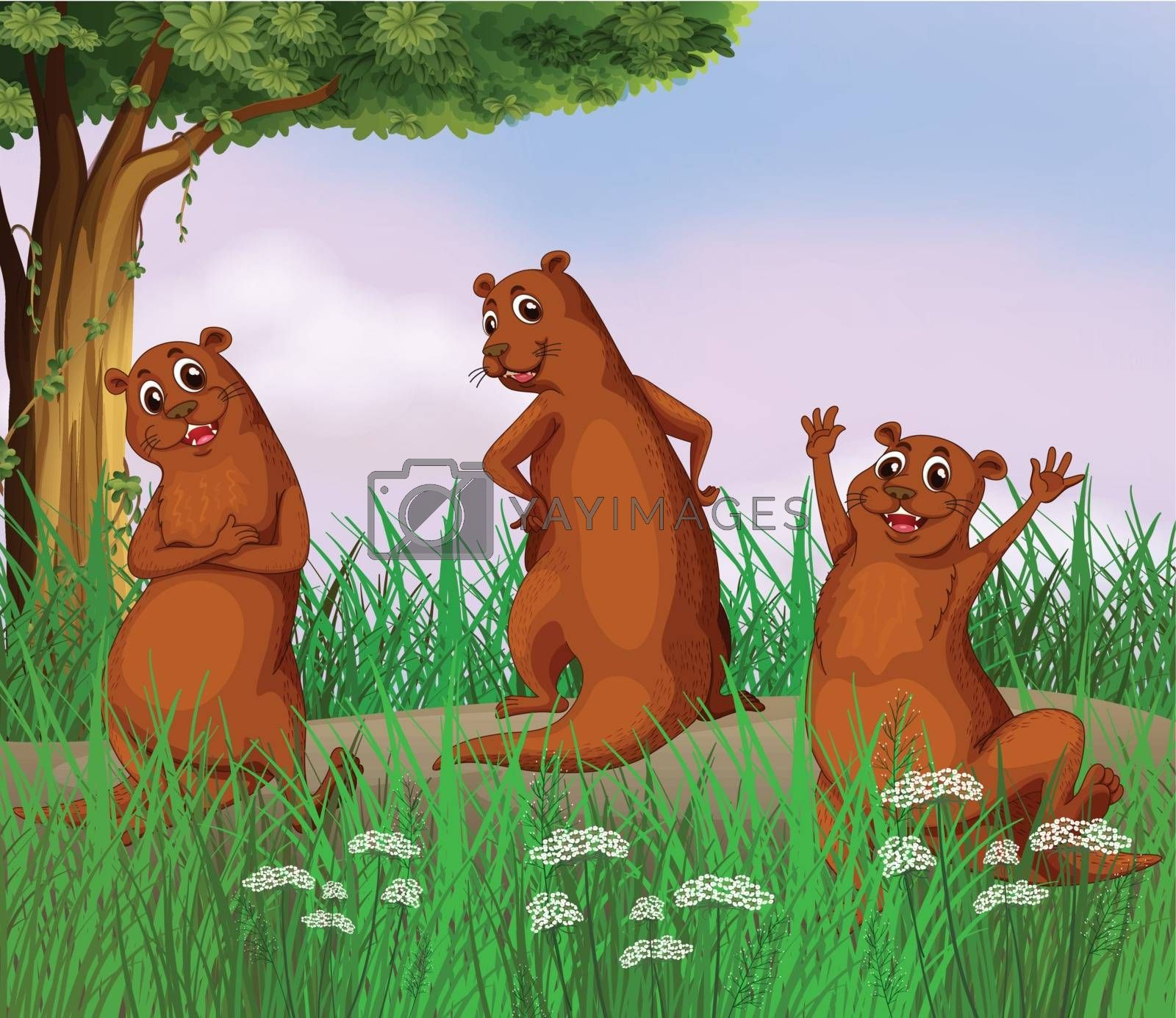 Illustration of three wild animals at the road
