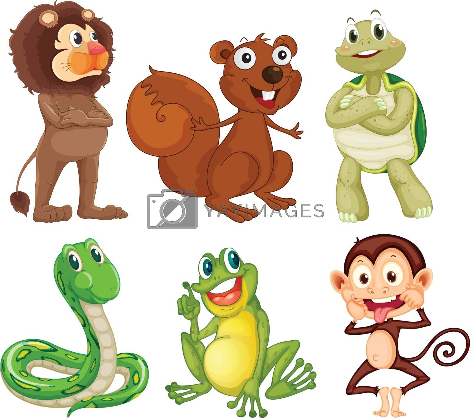 Illustration of the six different kinds of animals in the jungle on a white background