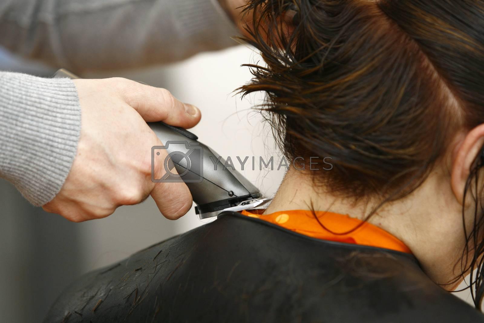 Hairdresser cutting hair in hairdresser salon