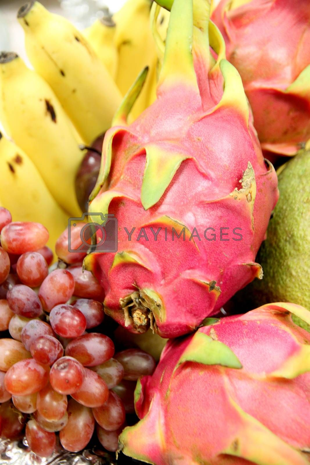 Fruit Gathered in basket on white background and Composition to Design.