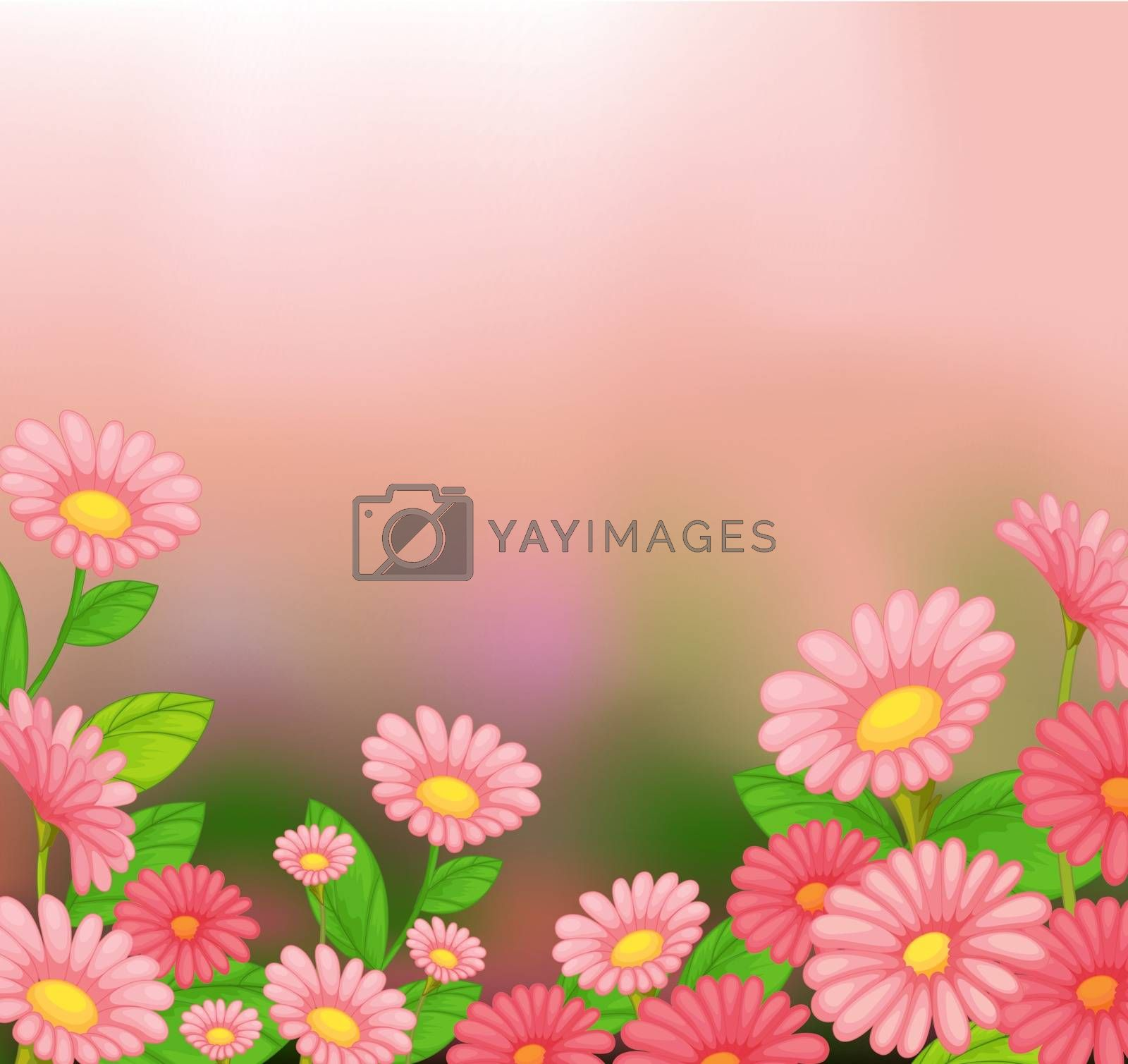 Illustration of the view of the beautiful pink flowers
