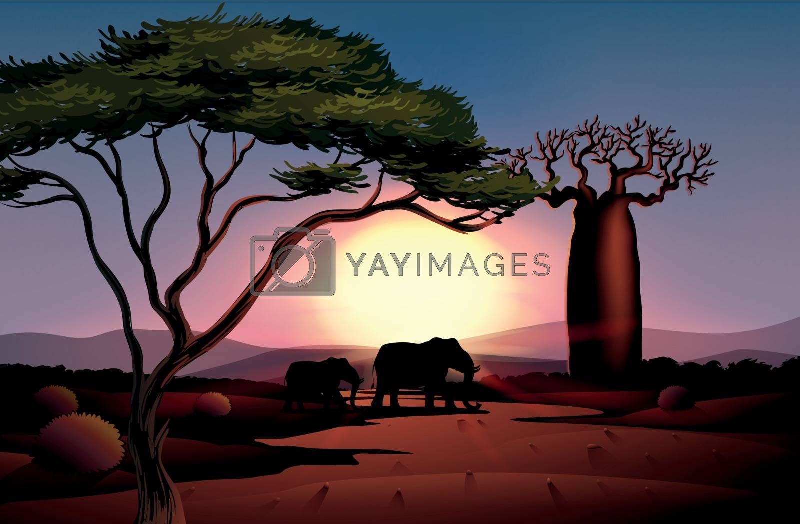 Illustration of a sunset at the desert with animals