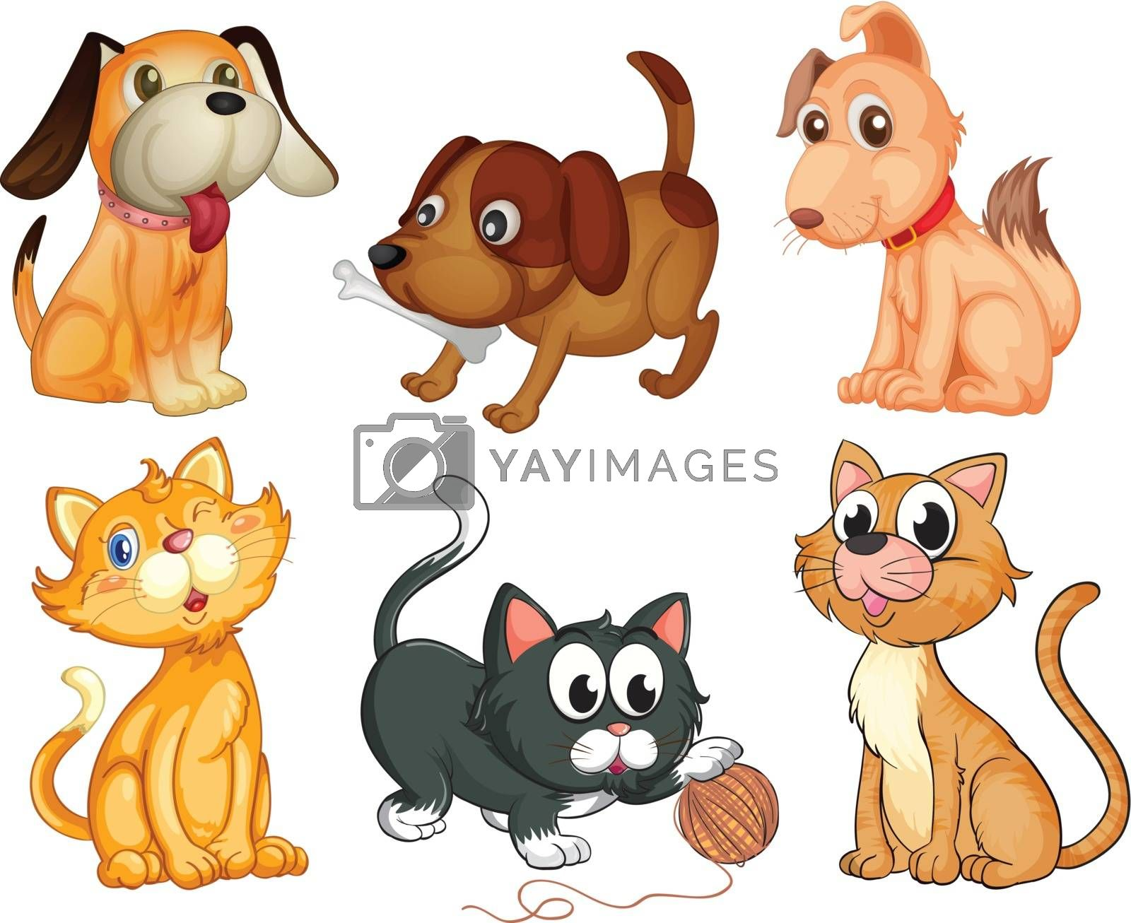 Illustration of the lovable pets on a white background