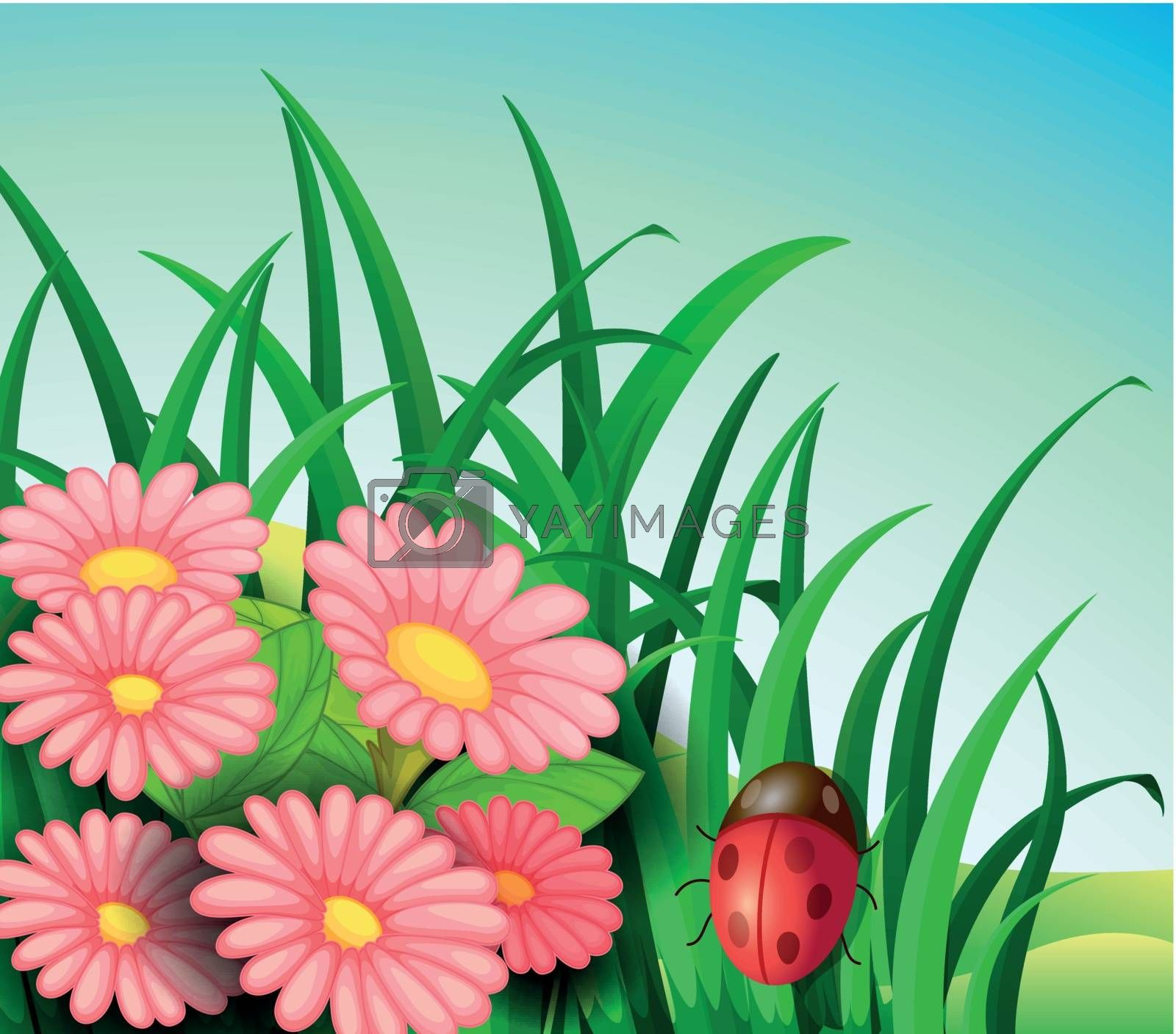 Illustration of a ladybug in the garden with pink flowers