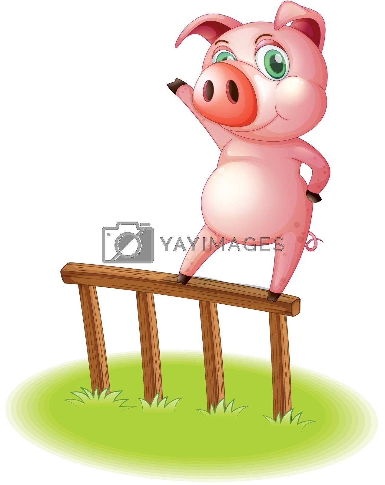 Illustration of a pig standing above the wooden fence on a white background